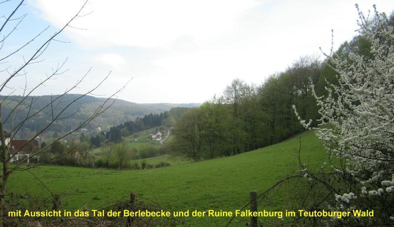 Tal der Berlebecke mit Ruine Falkenburg inmitten der weiten Wälder des Teutoburger Waldes