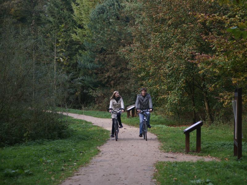 Radfahren am Erlebnispfad Holter Wald