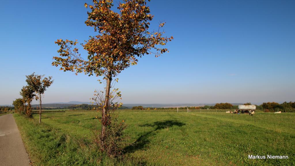 Weserhöhen_Blick_nach_Norden_hinten_links_der_Köterberg