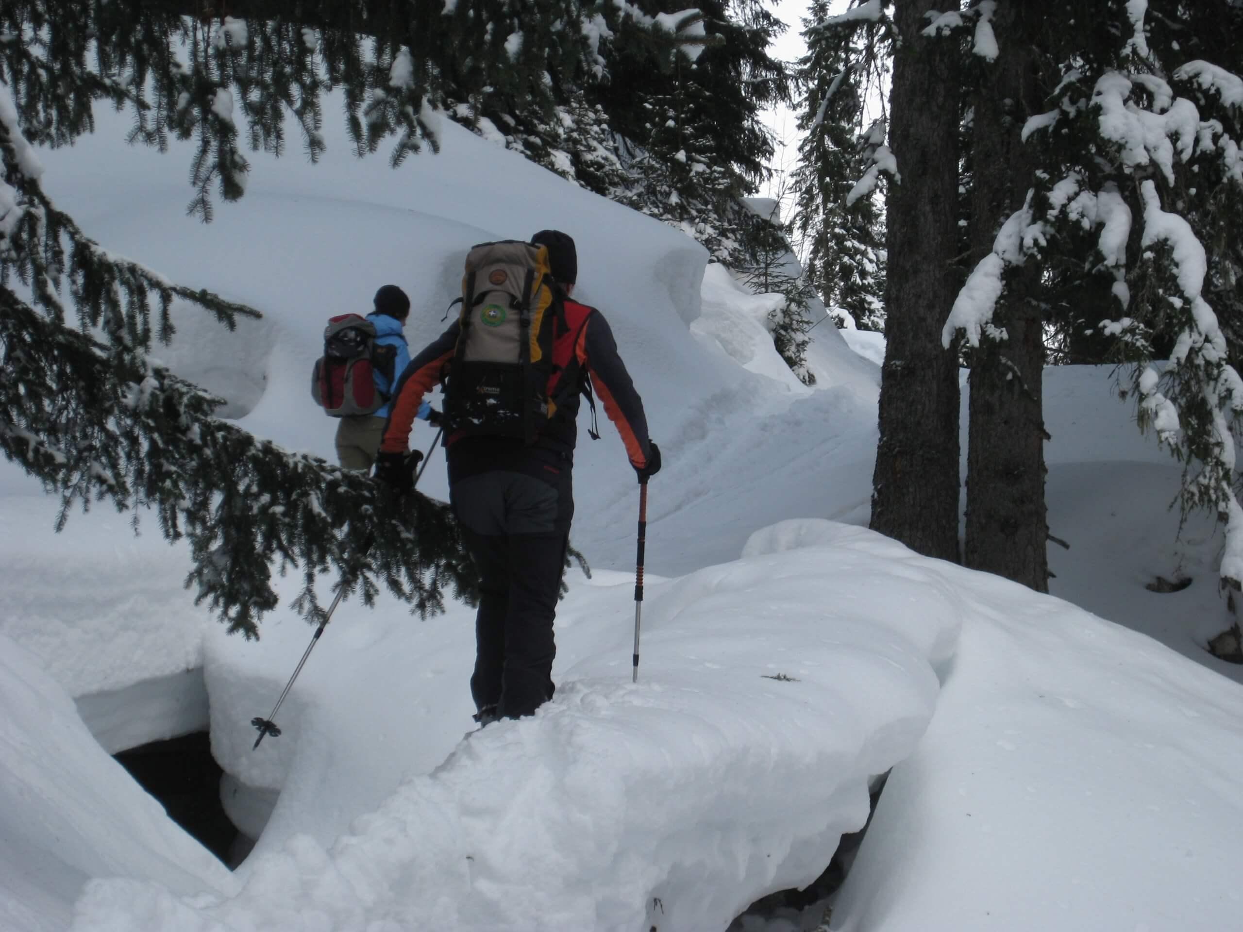 diemtigtal-erb-sport-schneeschulaufen-winter