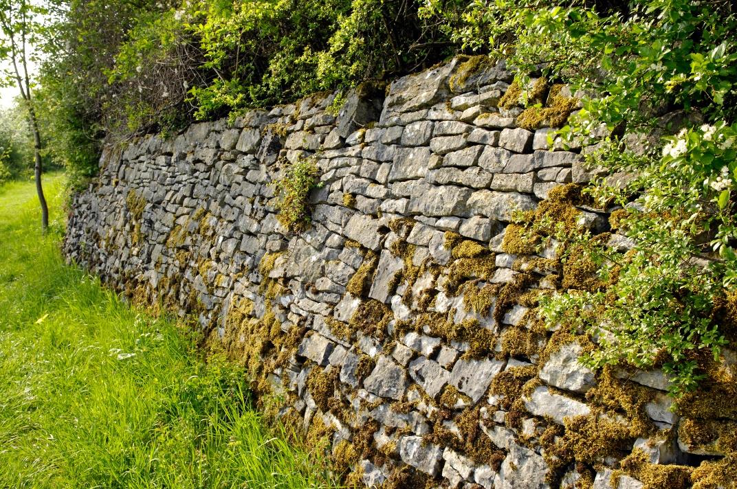 Trockenmauer am Kreuzweg Jakobsberg