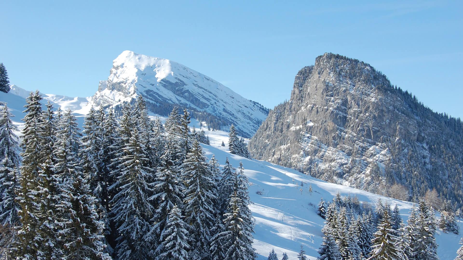 wiriehorn-schneeschuh-wandern-winter-schnee