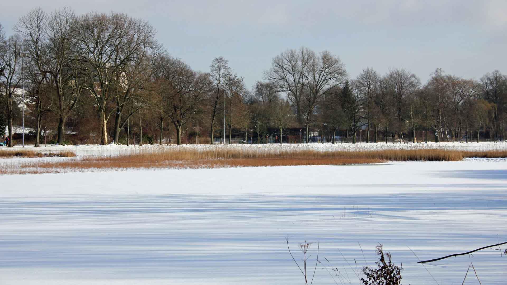 celle-dammaschwiese-winter-02