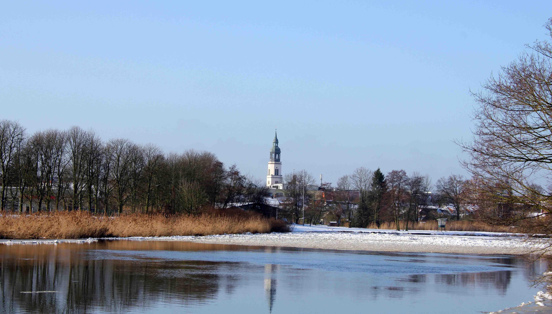 Die Dammaschwiese im Winter