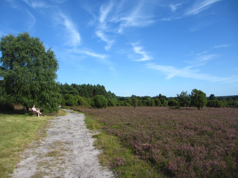 Wanderweg Rehrhofer Heide