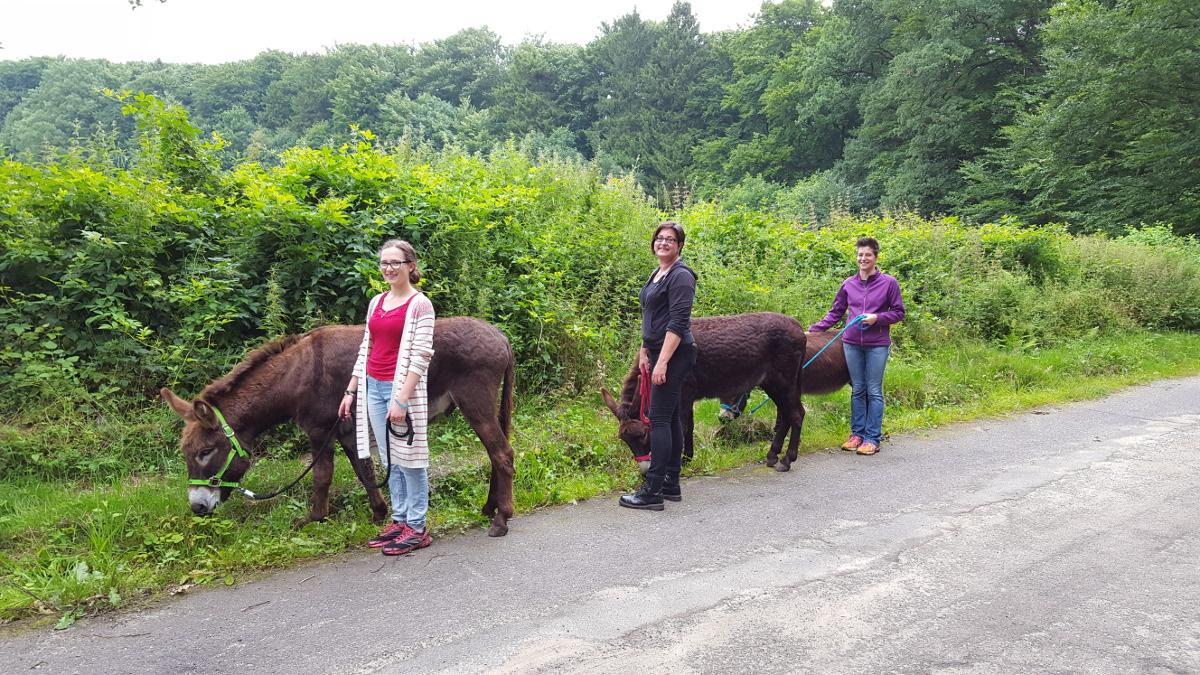 Wanderung mit den Eseln