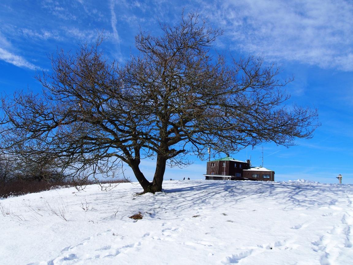 Köterberg im Winter