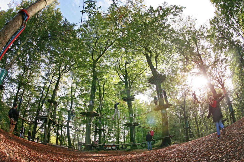 Herbsttag im Teuto-Kletterpark