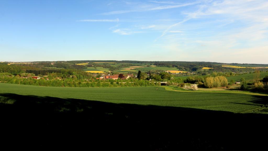 Blick vom Bierenberg über Blankenau zum Solling