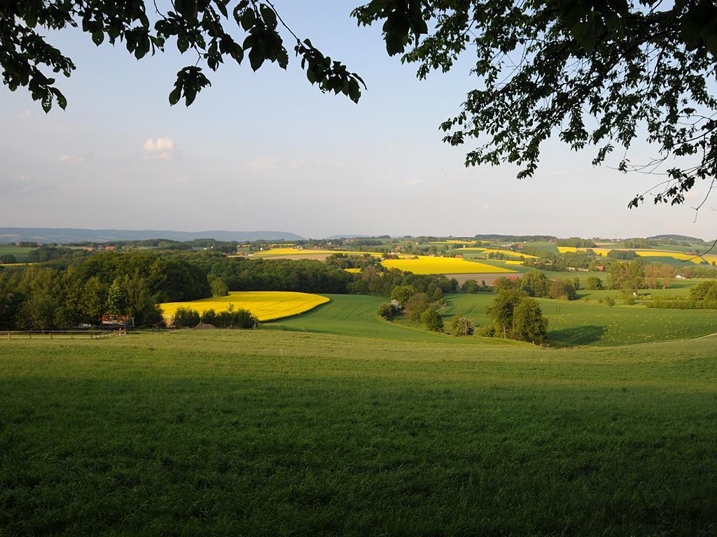 Eggeberg - Blick vom Berg