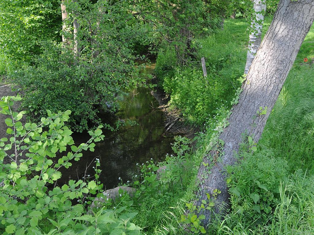 Bramschebach Mündung