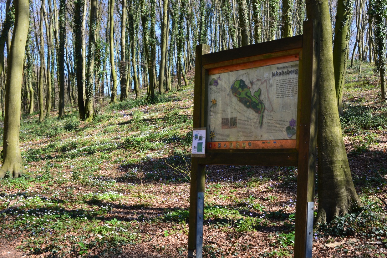 Infotafel im Naturschutzgebiet