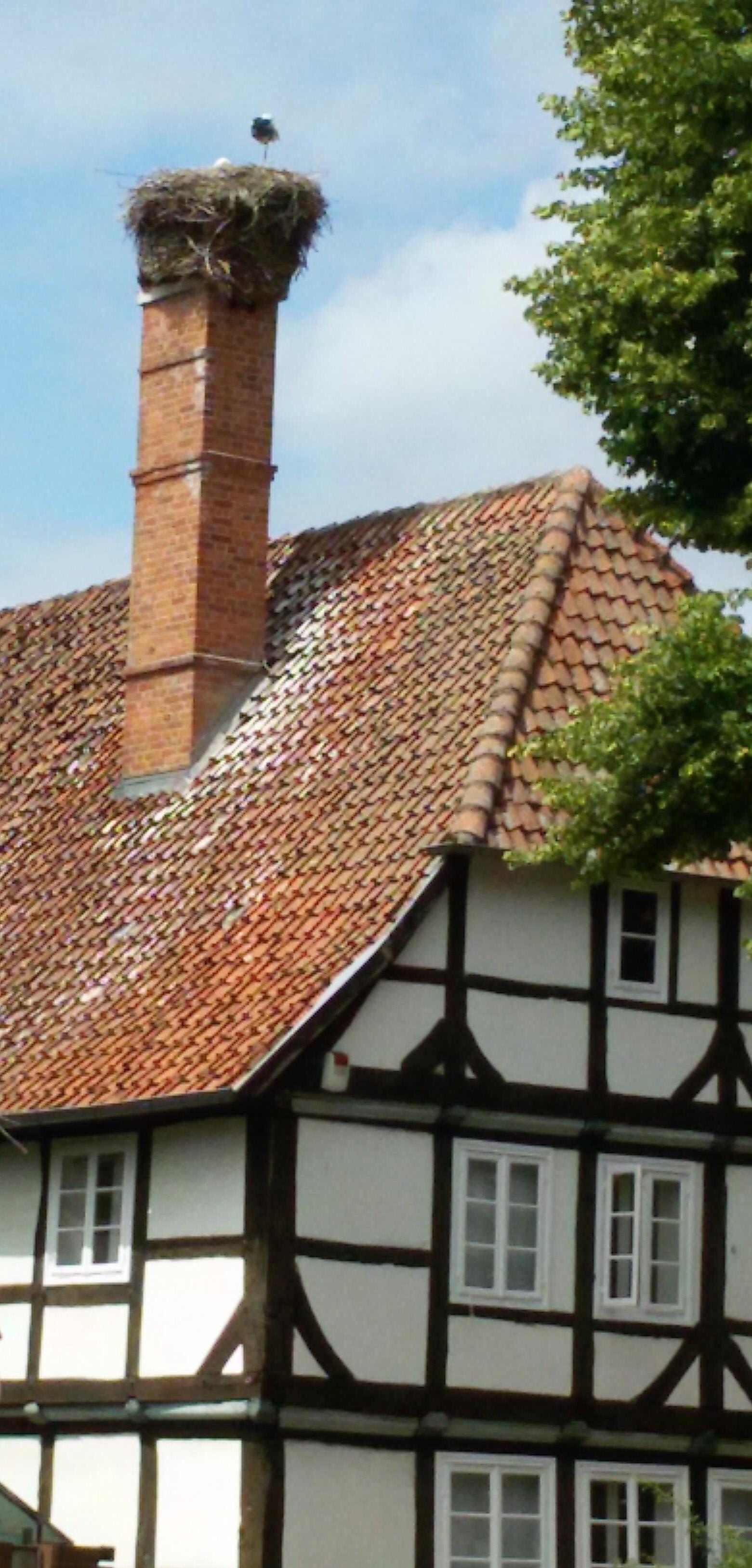 Storchenhaus in NRÜ mit Storch