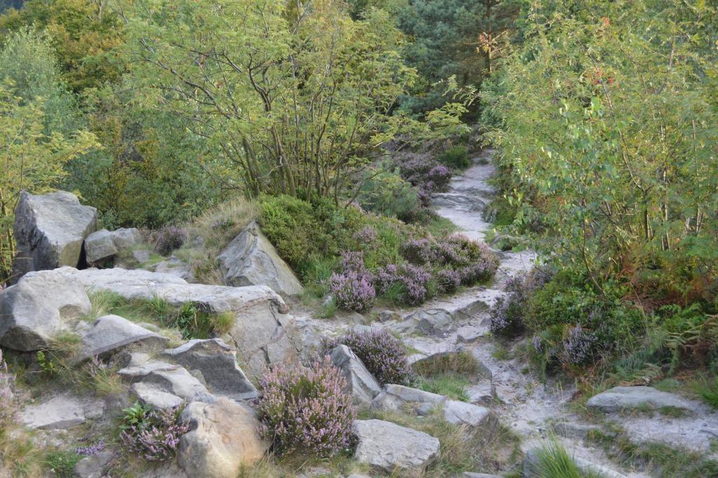 Heide und Felsen, Lippische Velmerstot
