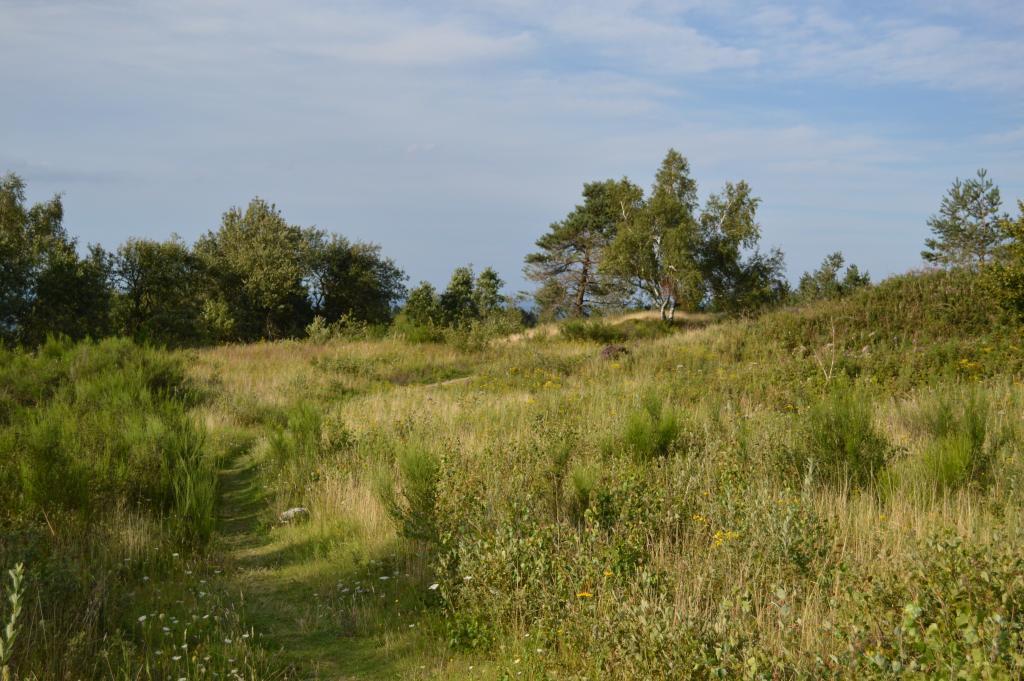 Bizarre Landschaft, Preussische Velmerstot