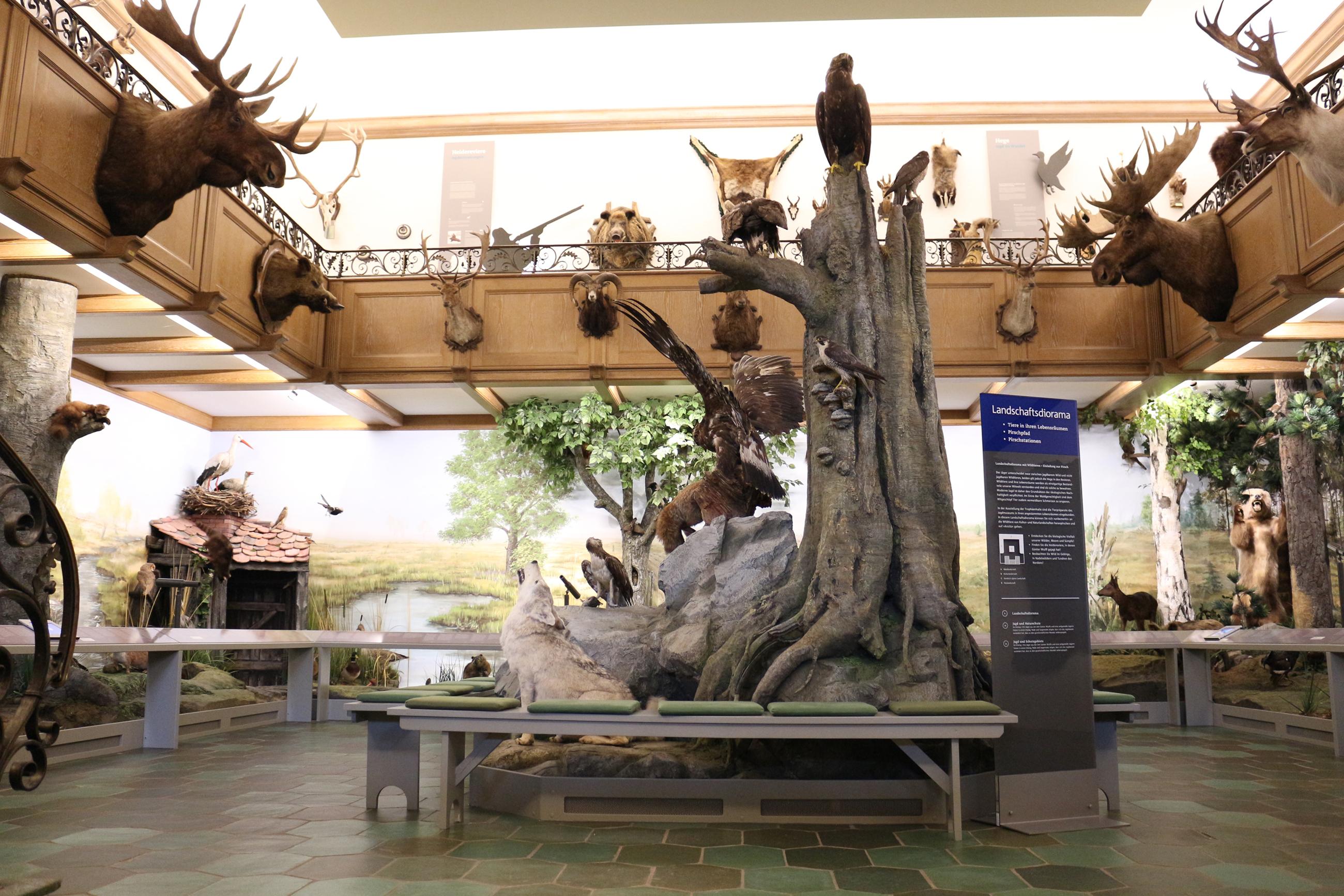 Eingangshalle Jagdmuseum Wulff
