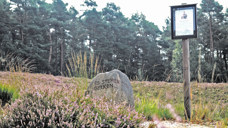 Stein und Hinweis auf Hermann Löns in der Gifhorner Heide