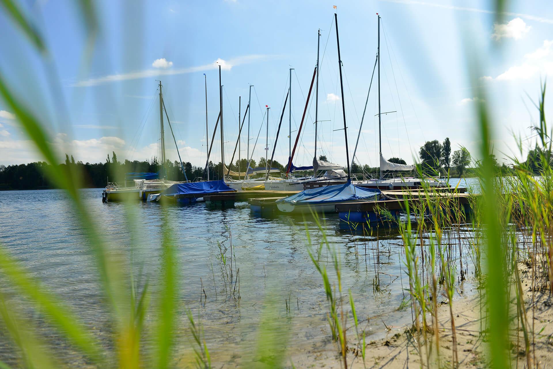Segelboote am Tankumsee