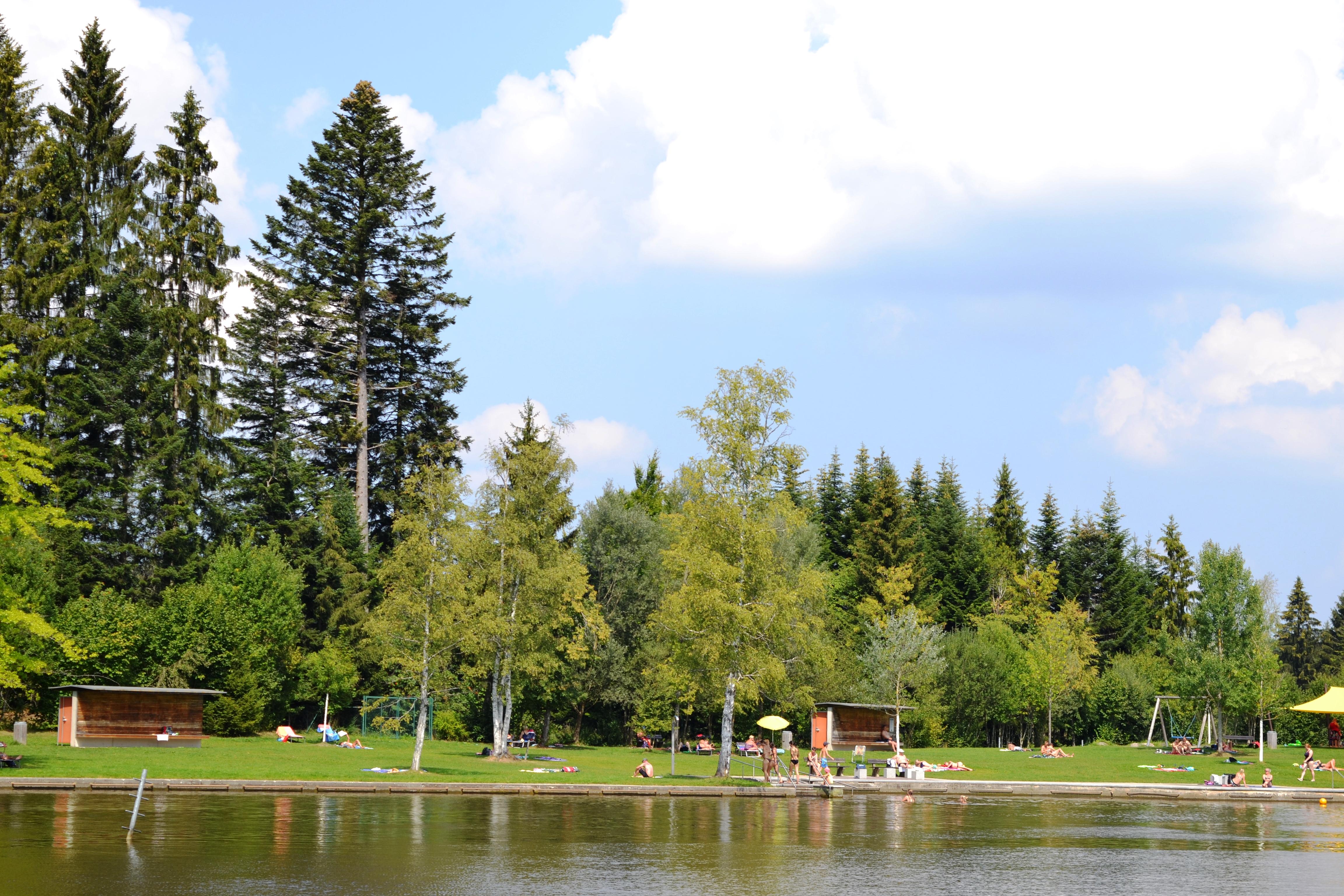 Waldseebad im Sommer