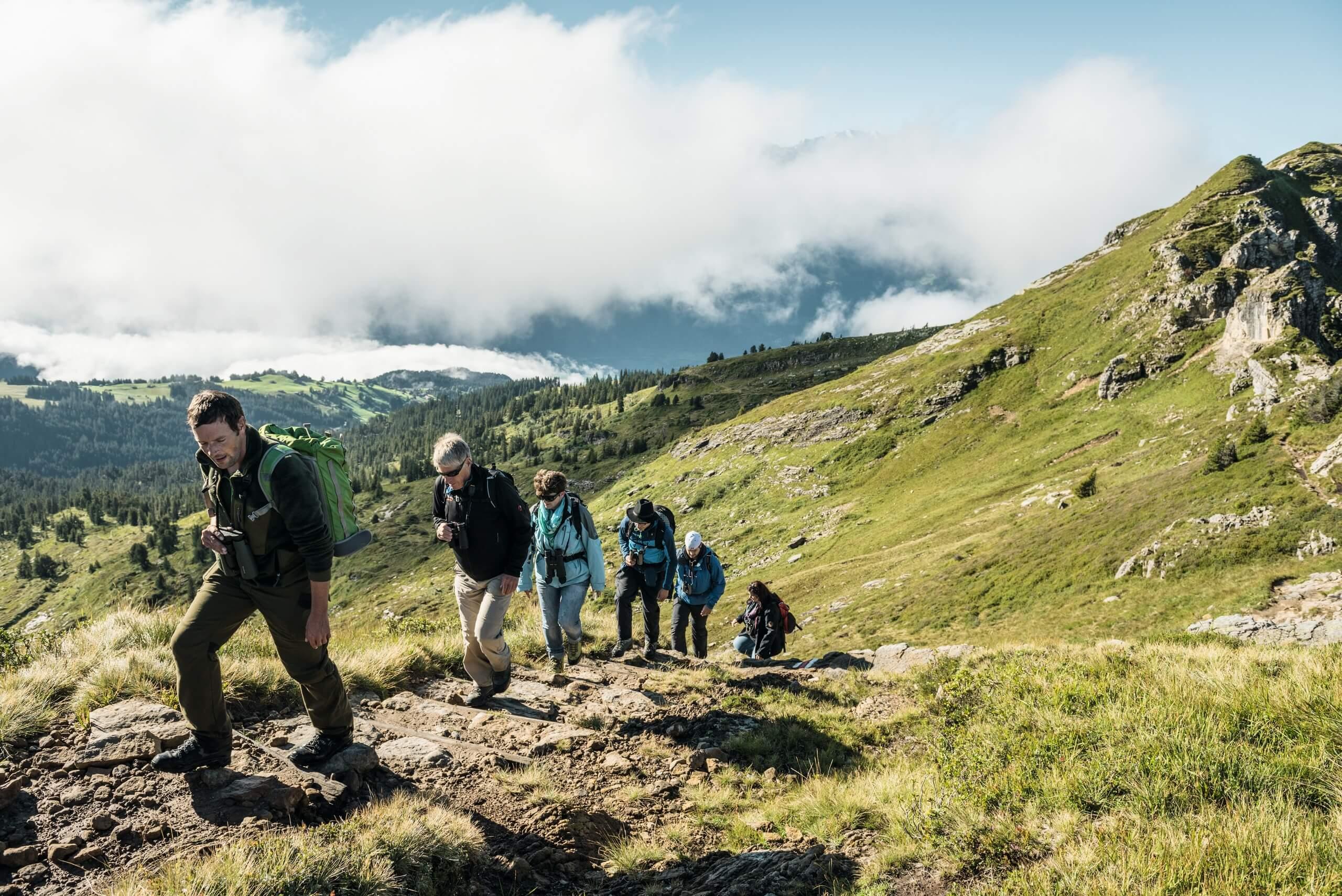 niederhorn-wildbeobachtungen-herbst-gruppe-wandern