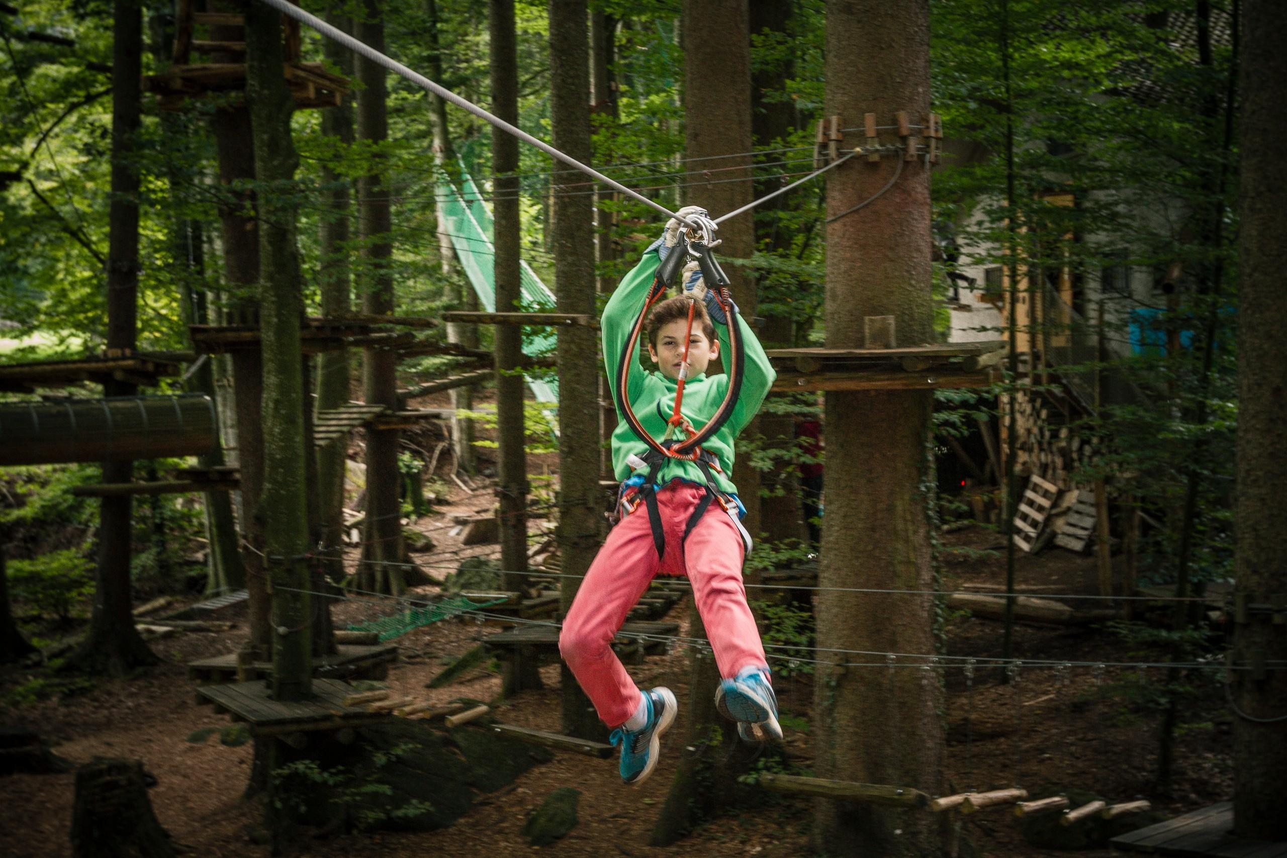 interlaken-seilpark-junge-sommer-zipline-wald-familienaktivitaeten