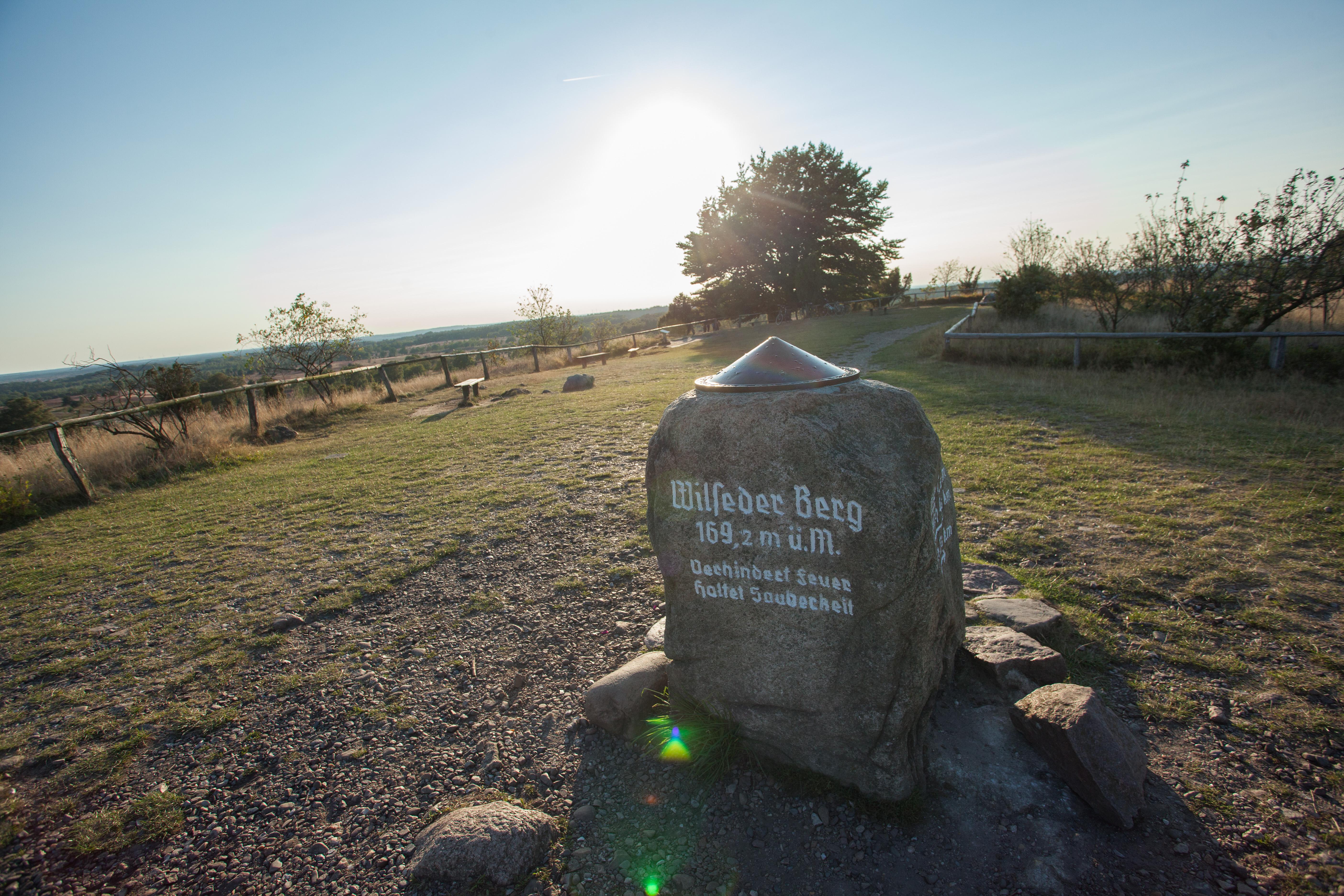 Stein auf dem Wilseder Berg