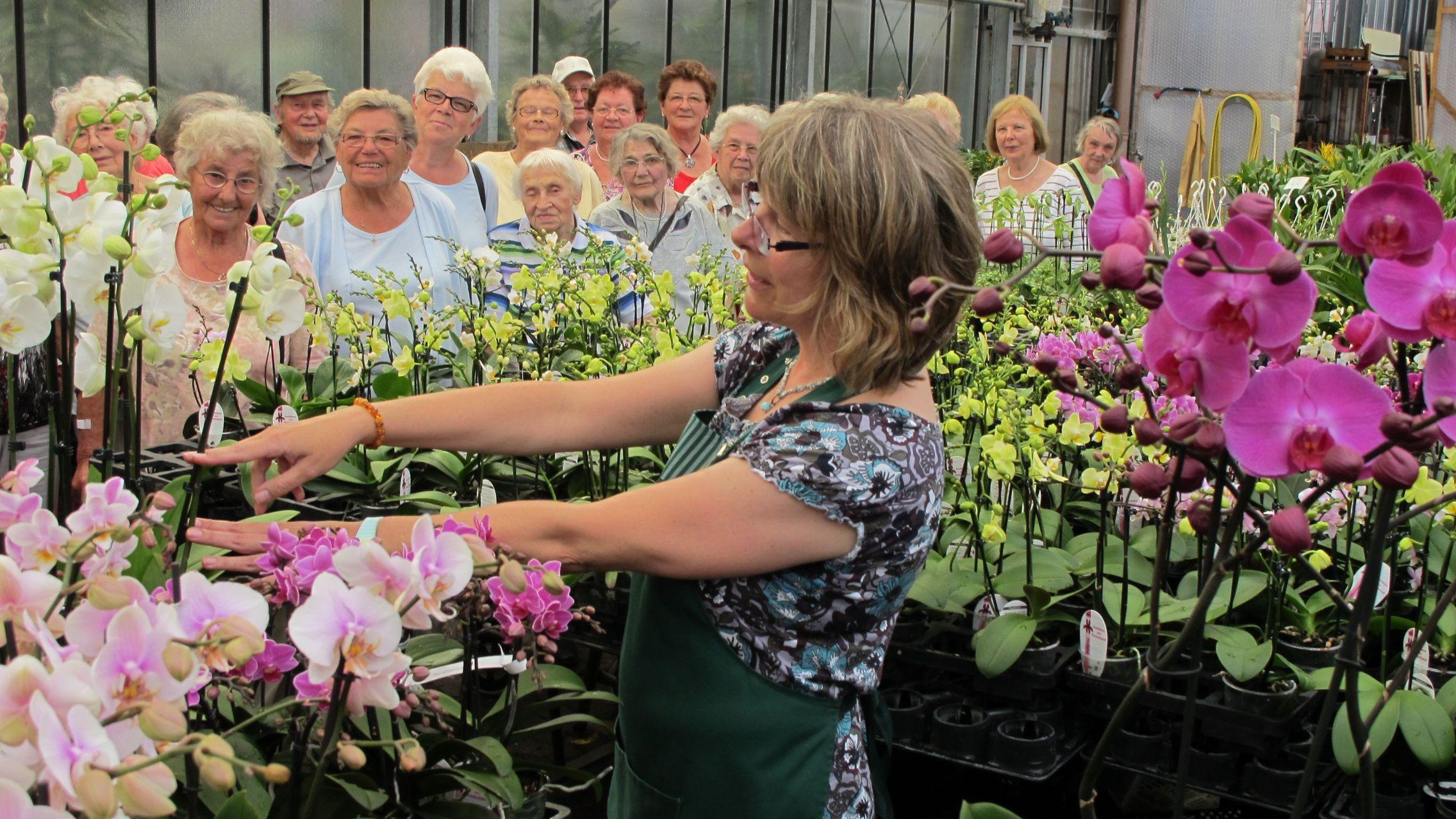 orchideenzentrum-wichmann-fuehrung