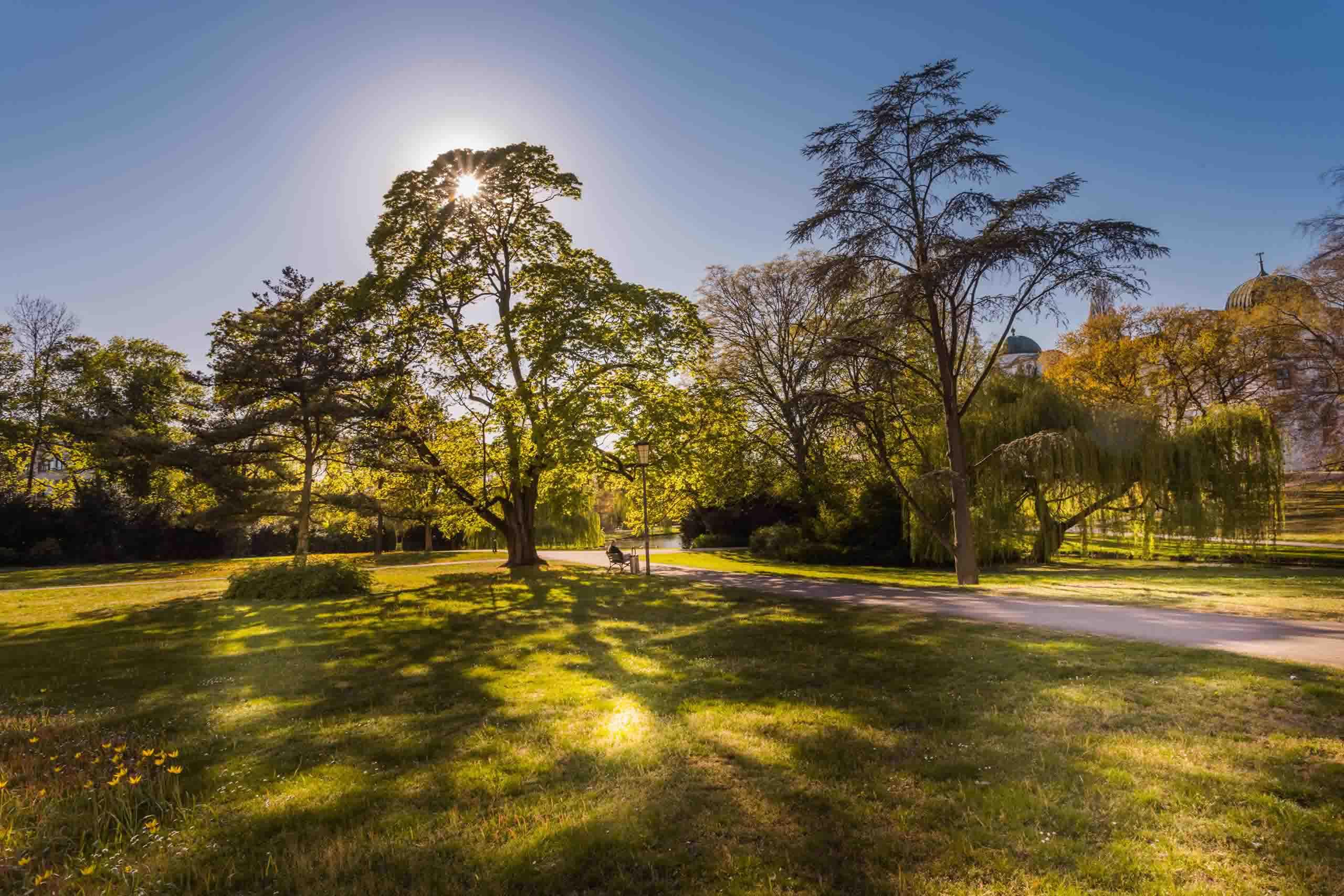 Schlosspark in Celle