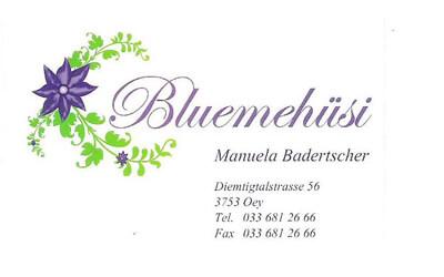 Bluemehüsi