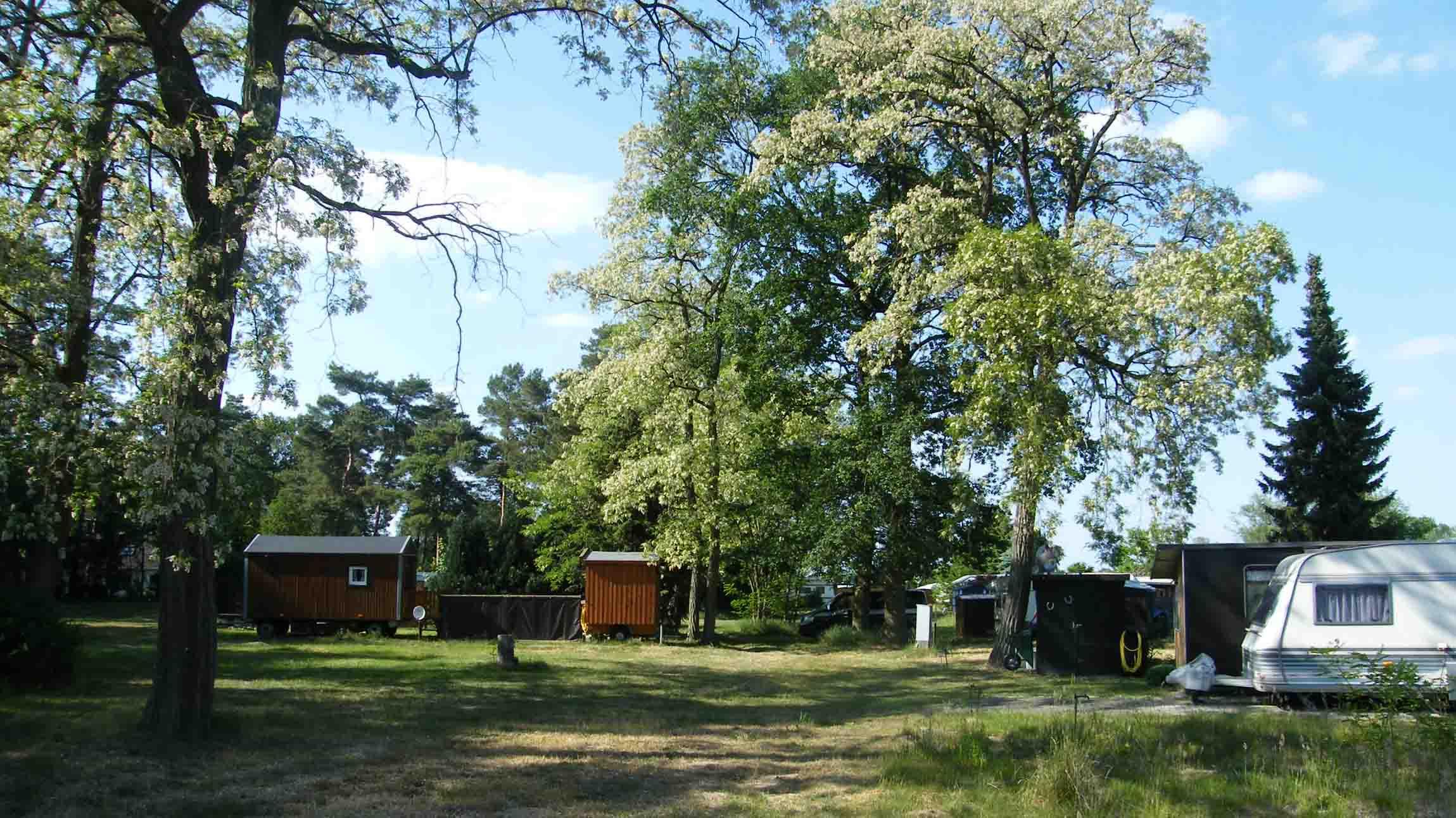 Campingplatz am Allerstrand Wienhausen