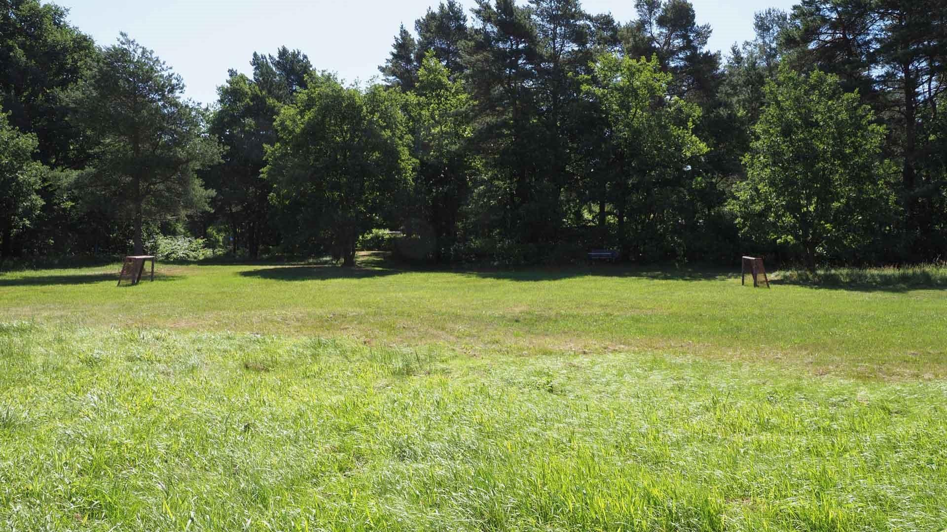 Naturcamping Hambühren, Wiese