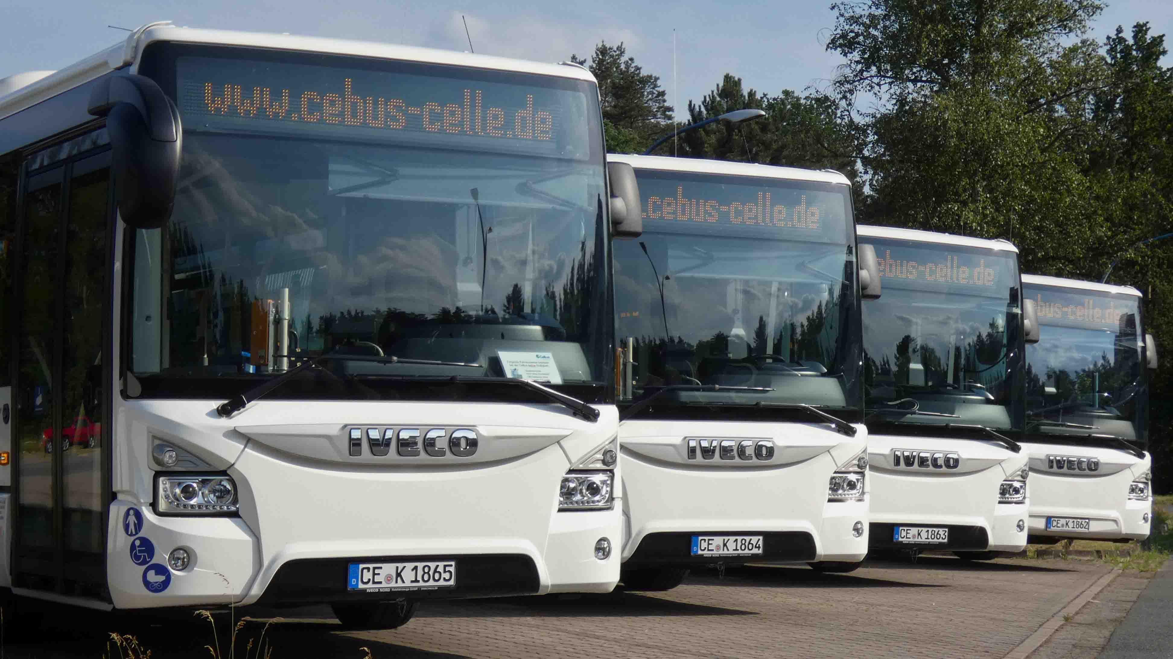 celle-cebus-busfahren-2