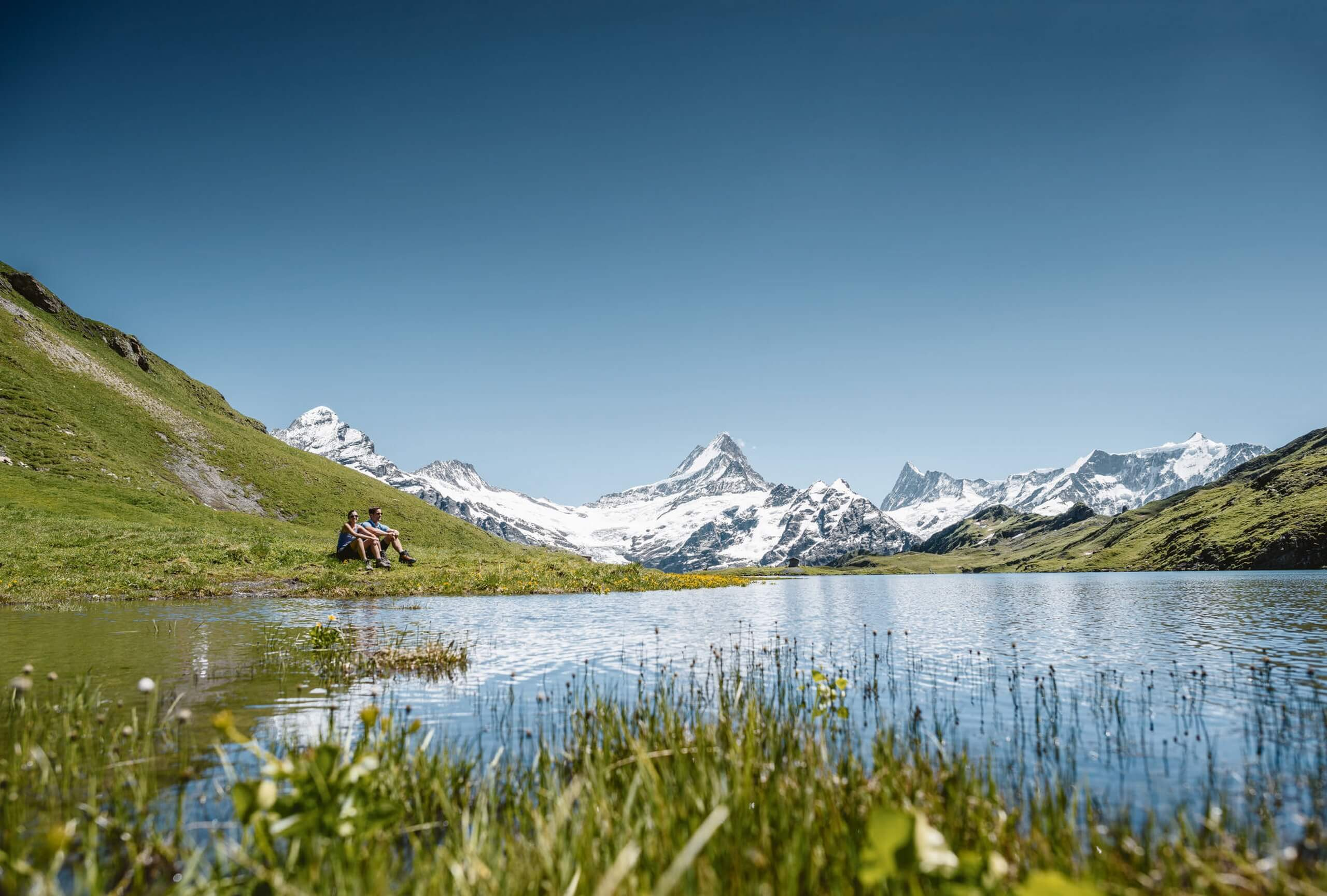 grindelwald-first-sommer-wandern-bachalpsee