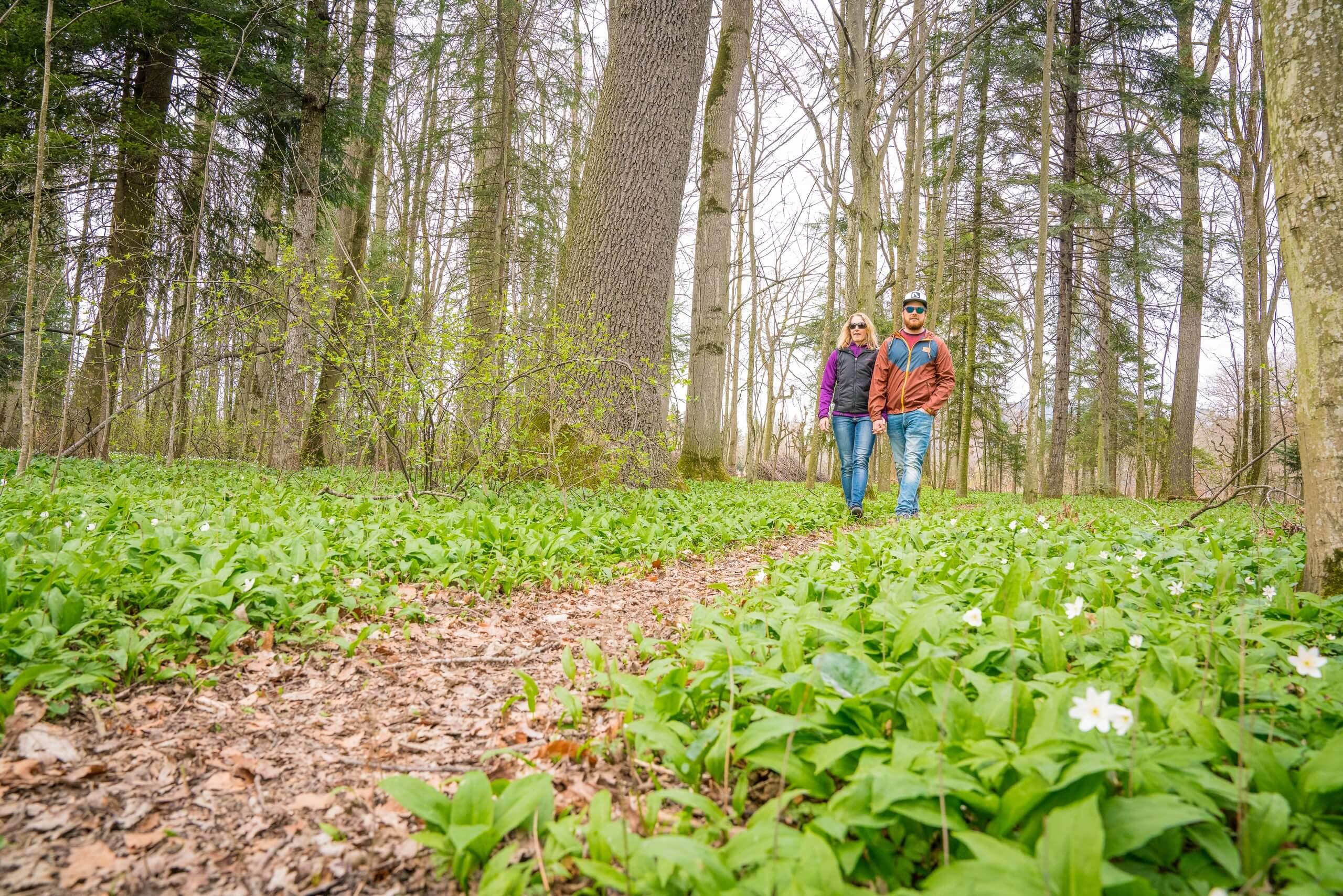 thun-bonstettenpark-paar-wald-fruehling-regenwettertipps-spazier-uferwege