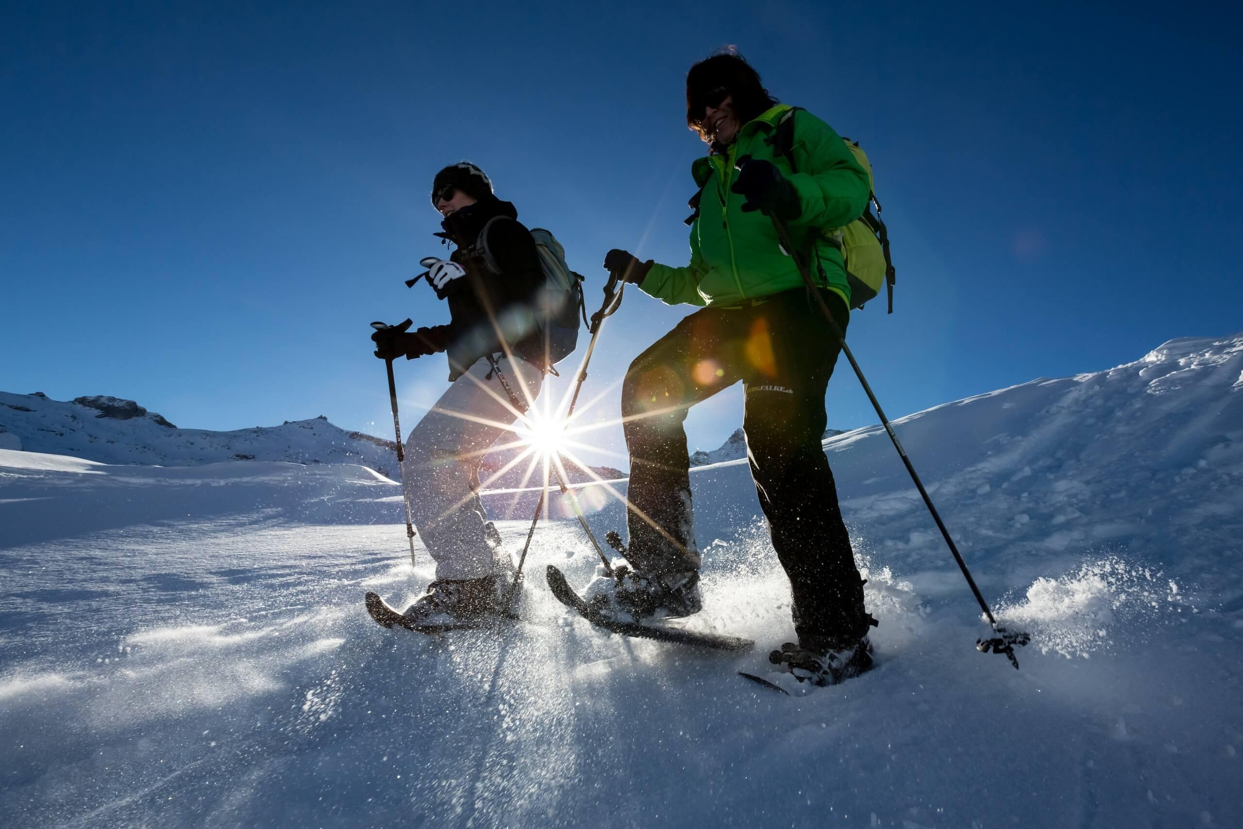 alpinschule-bergfalke-thun-schneeschuhtour-winter