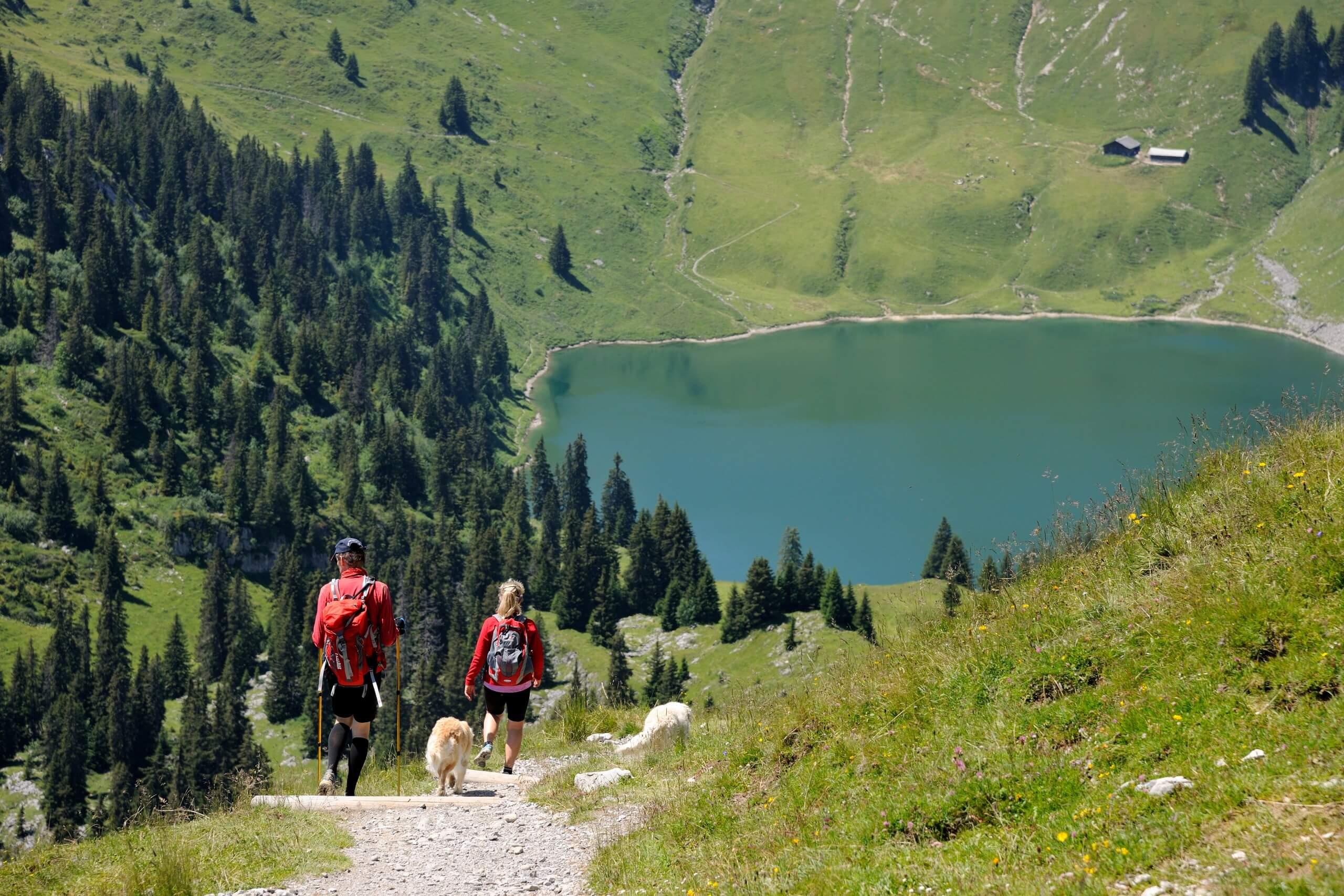 stockhorn-wandern-sommer-kulinariktrail