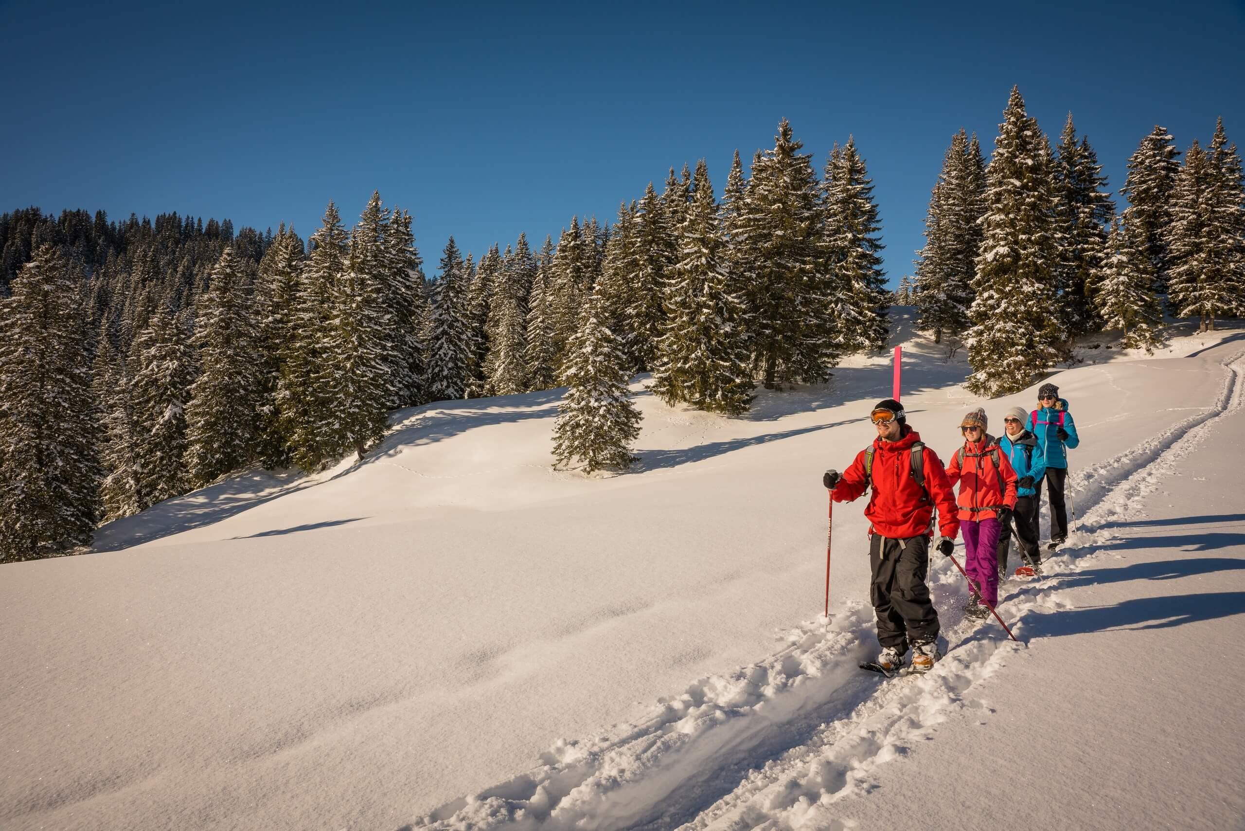 habkern-lombachalp-winter-schneeschuhlaufen-wald-winteraktivitaeten
