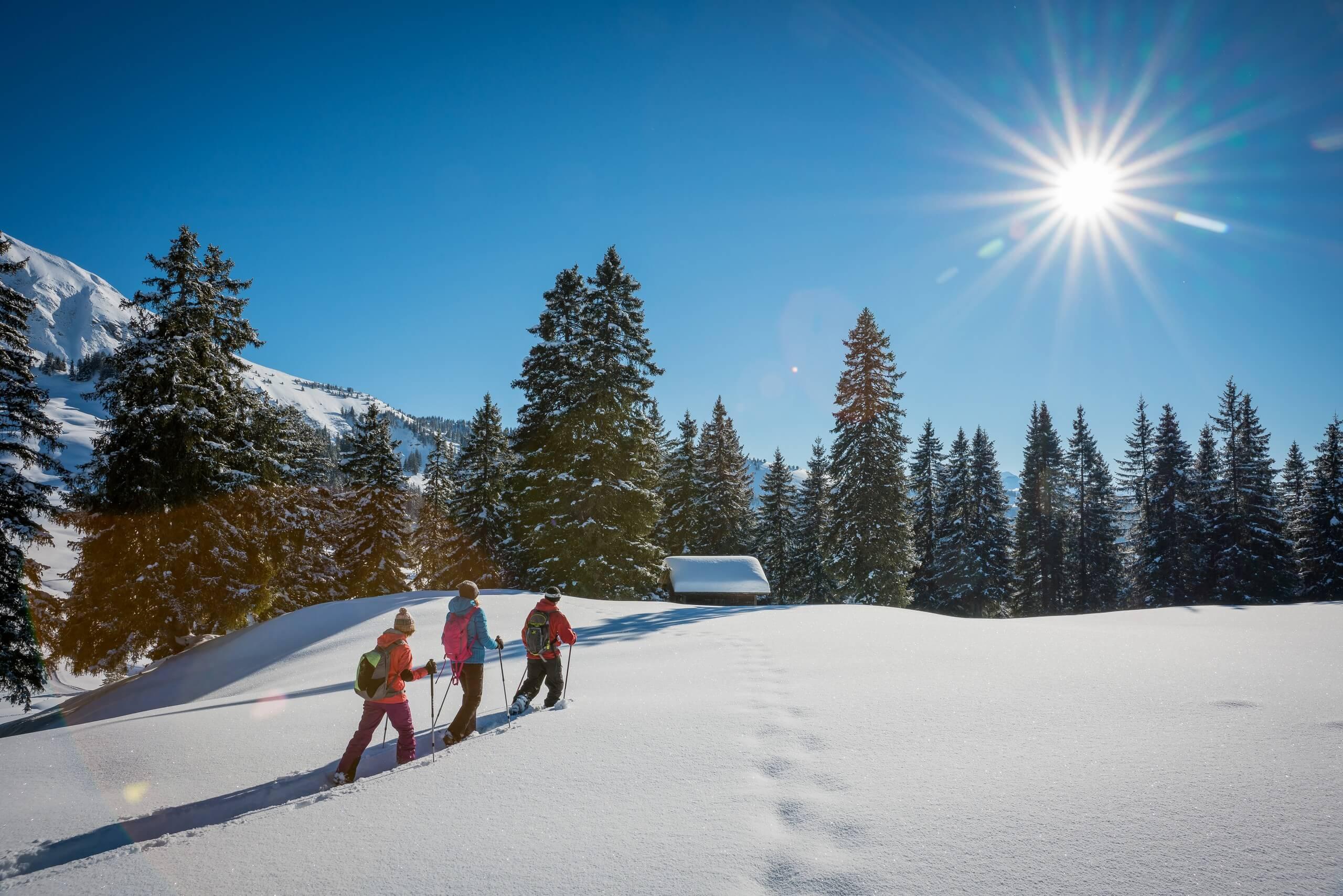 habkern-lombachalp-winter-schneeschuhlaufen-wald-huettli-soft-adventure