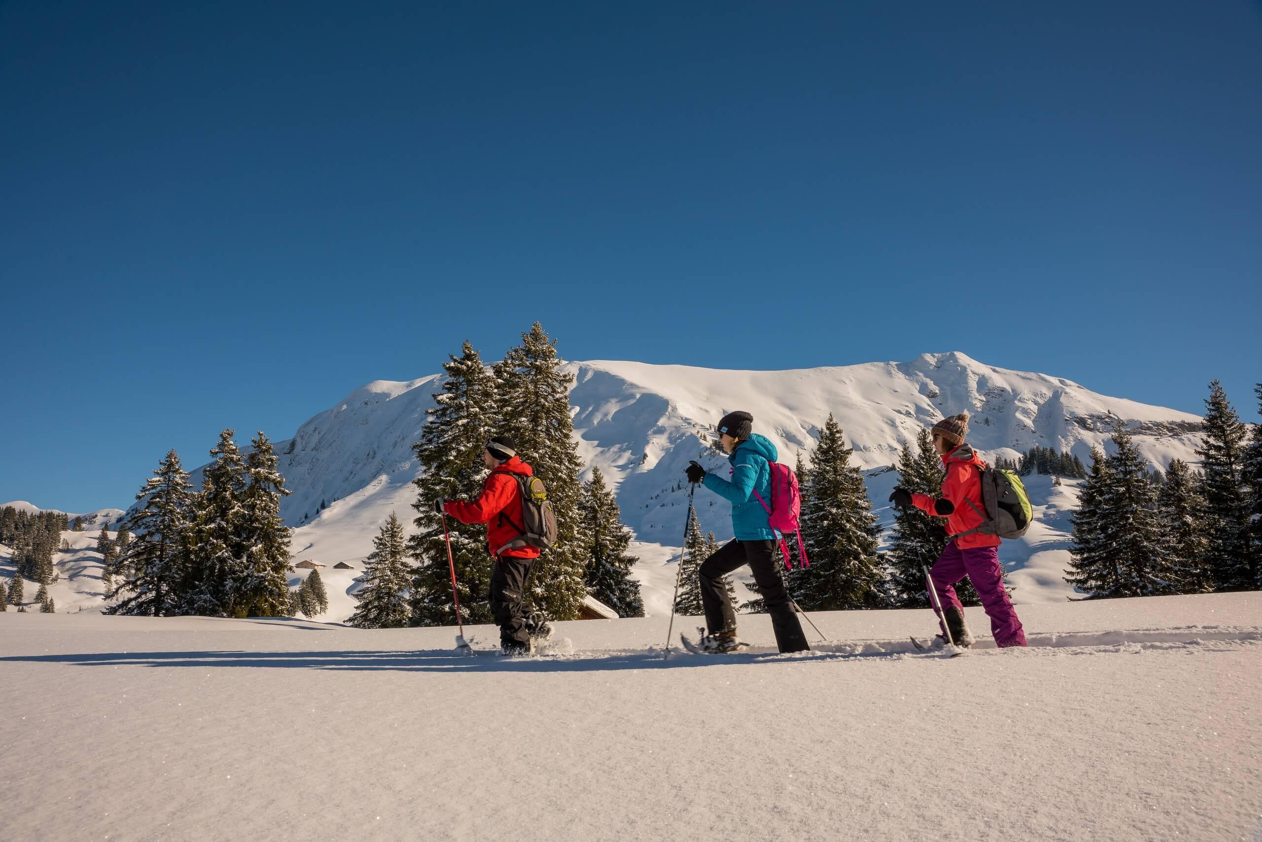 habkern-lombachalp-winter-schneeschuhlaufen-gruppe-tannen-landschaft-gefuehrte-touren-alplandschaften