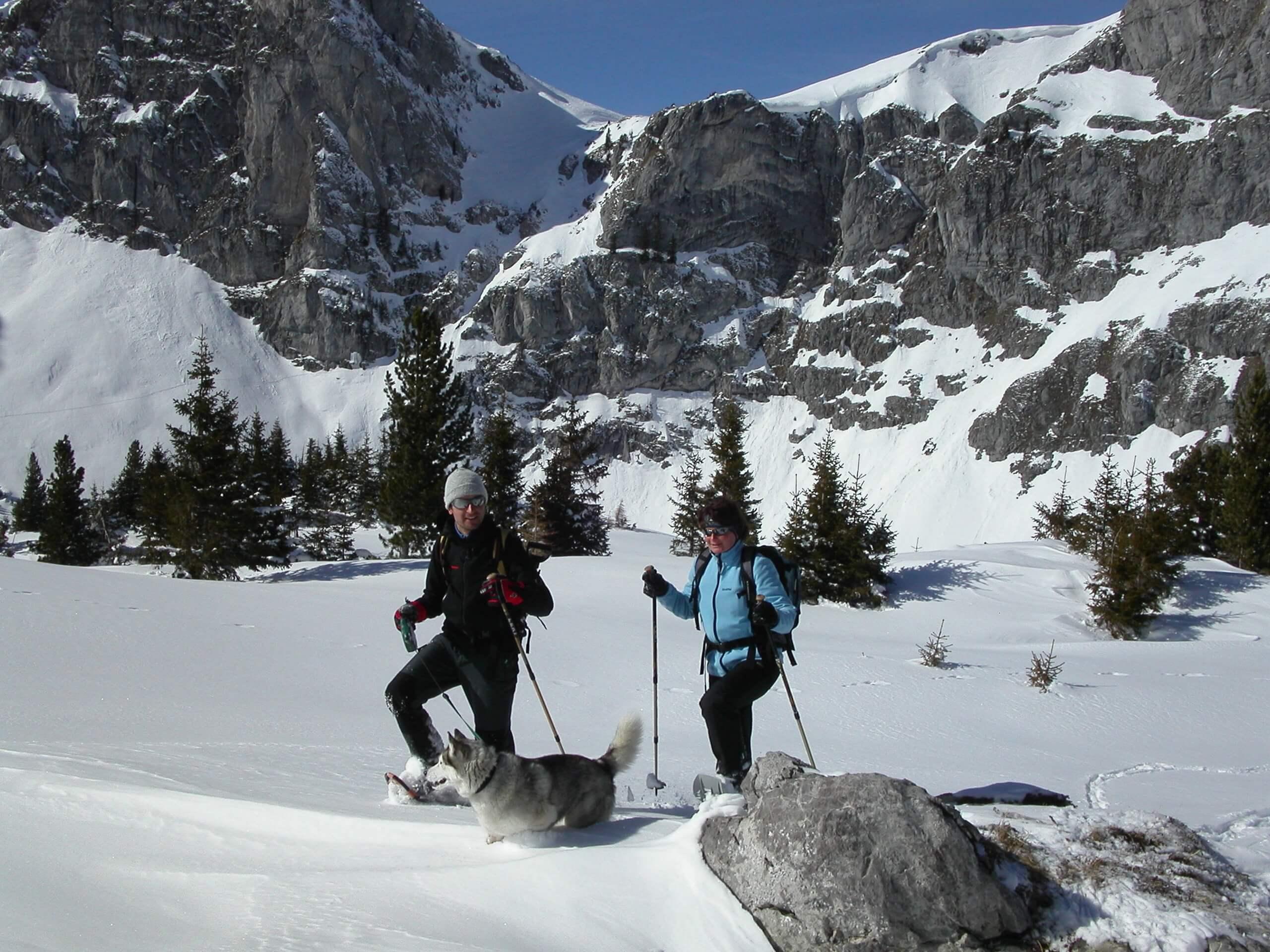 diemtigtal-erb-sport-winterwandern