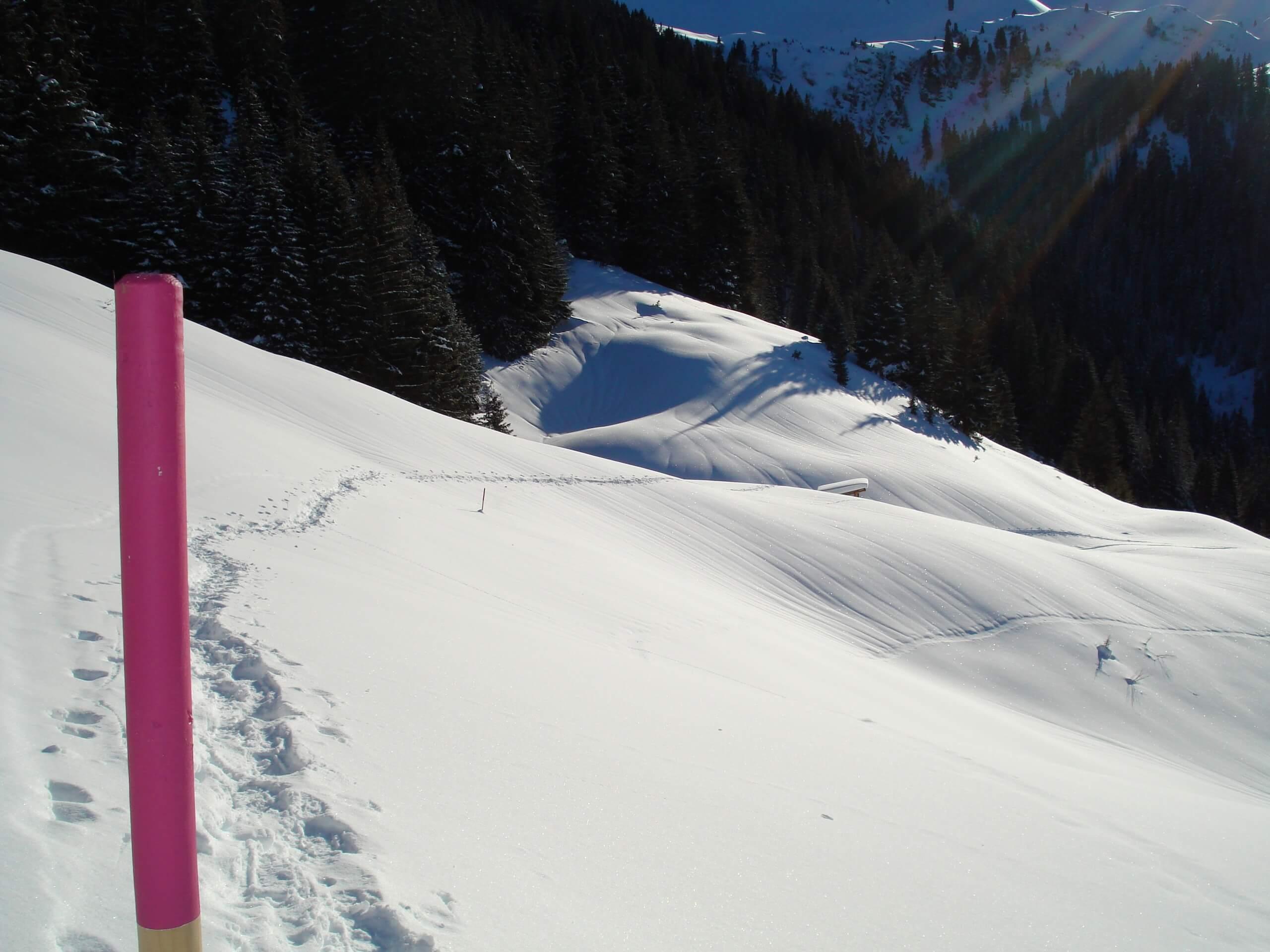 diemtigtal-erb-sport-schnee-schneeschuhlaufen-winter