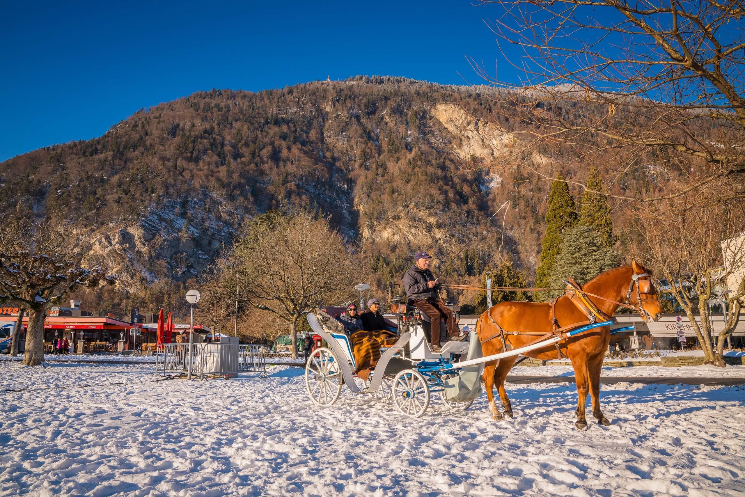 interlaken-kutschenfahrt-dorfrundfahrt-winter-pferde
