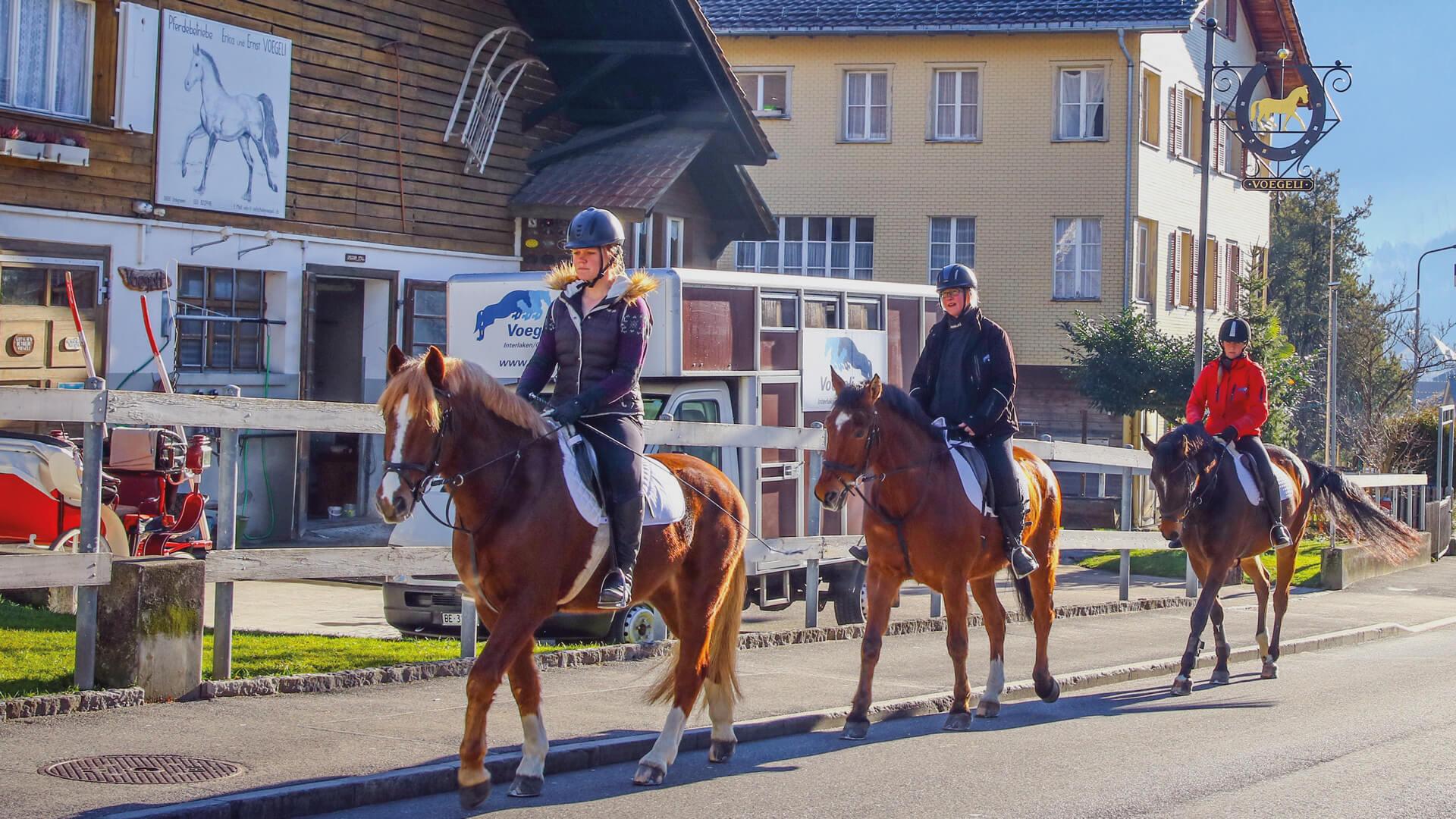 interlaken-reitschule-voegeli-pferde-reiten