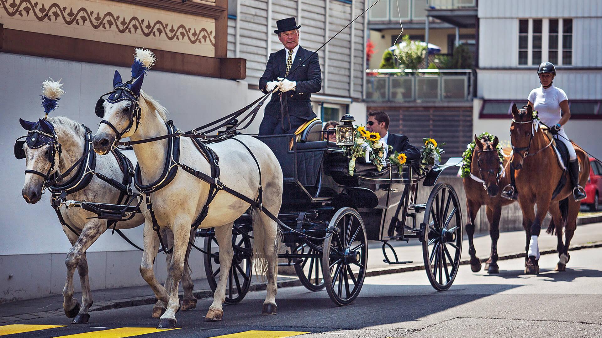 interlaken-reitschule-voegeli-kutsche-pferde