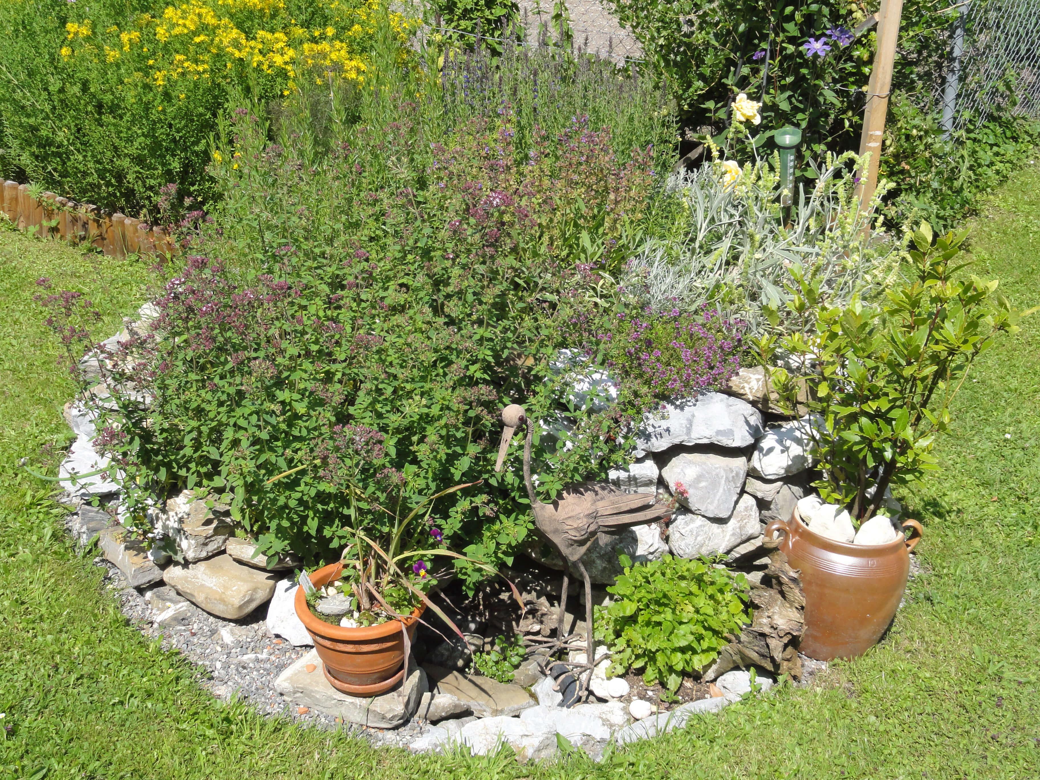 Vielfältiger Kräutergarten