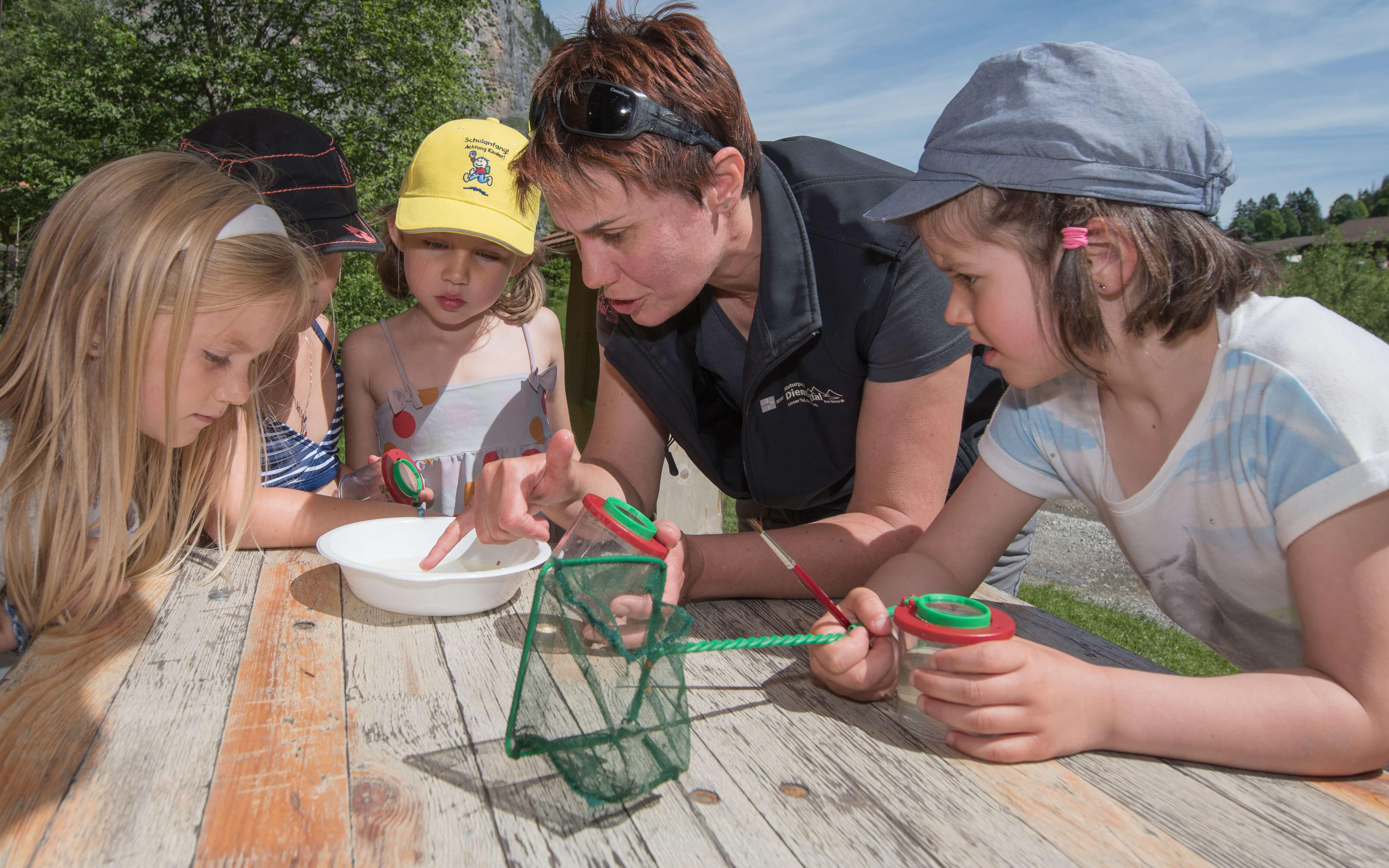 Mit Becherlupen und Fangnetzen forschen und entdecken