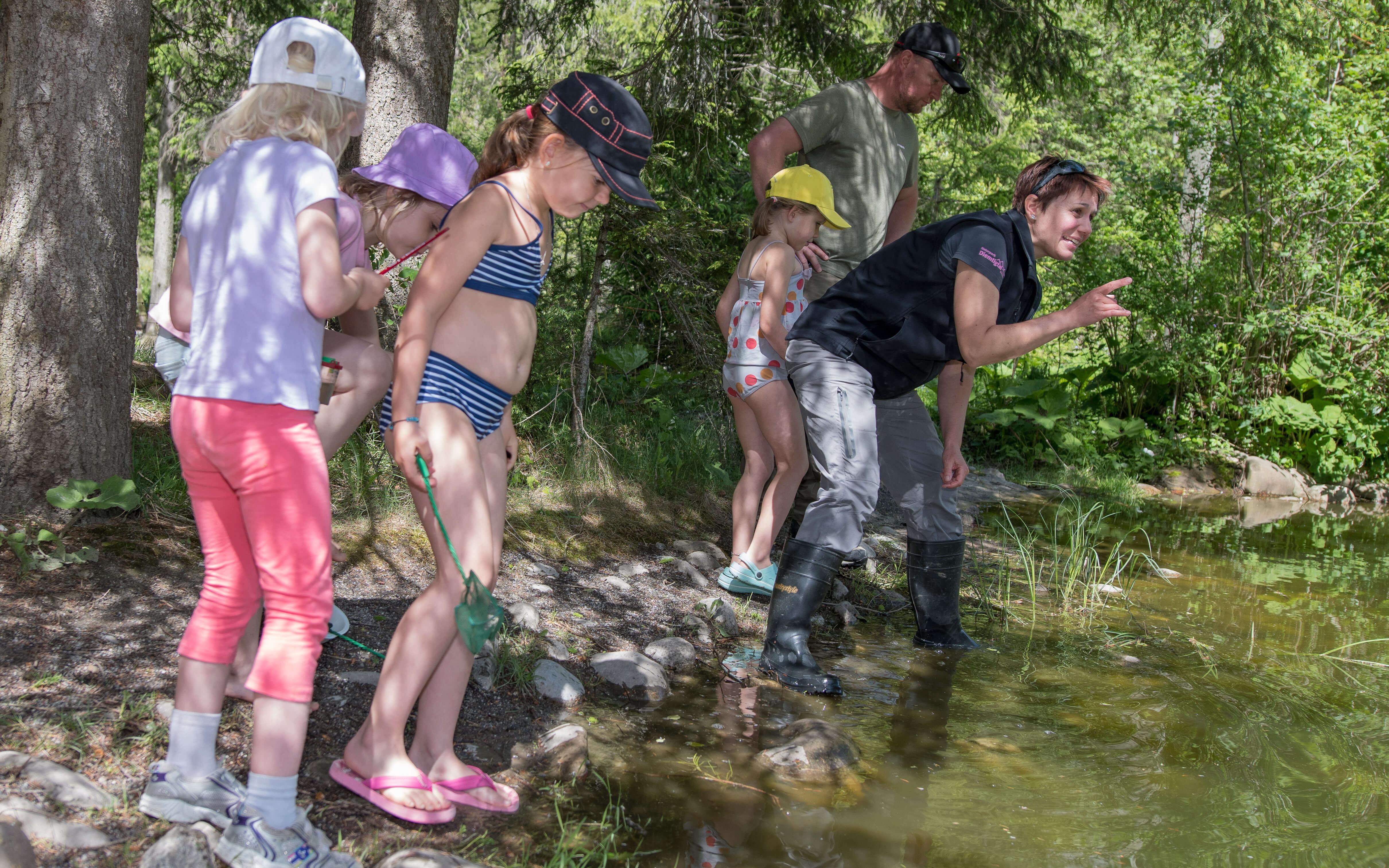 Interessante Einblicke zu den kleinen Wasserlebewesen