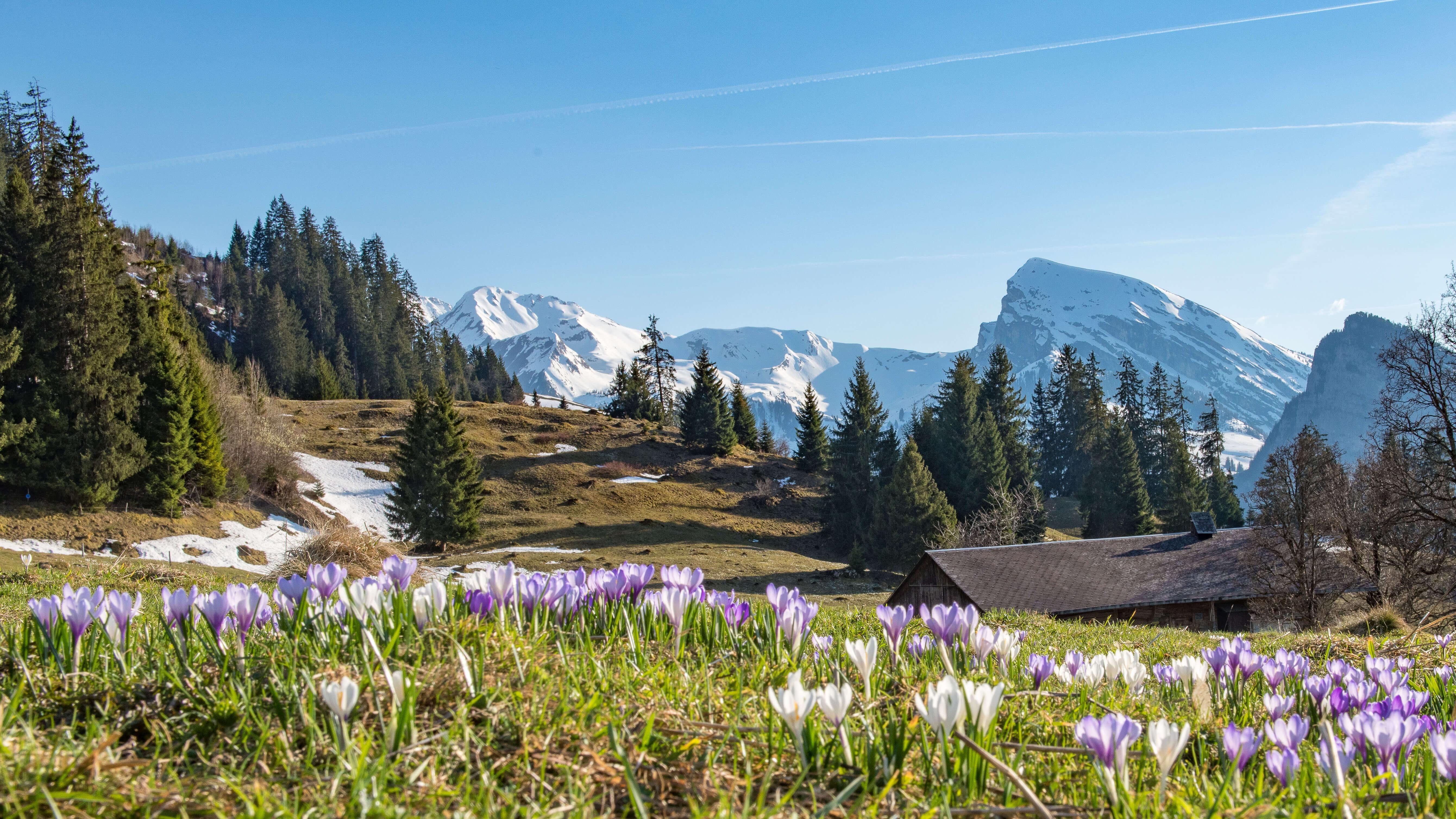 Frühlingshafte Weitsicht auf dem Schwingerweg
