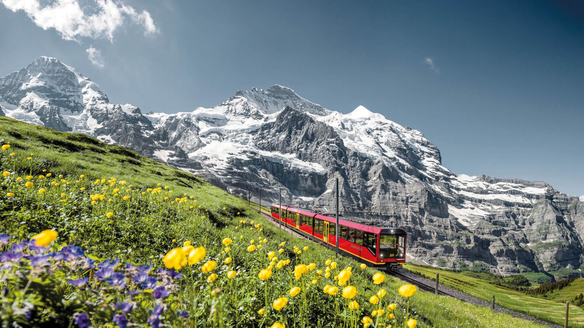 jungfraujoch-jungfraubahn-moench-jungfrau-sommer