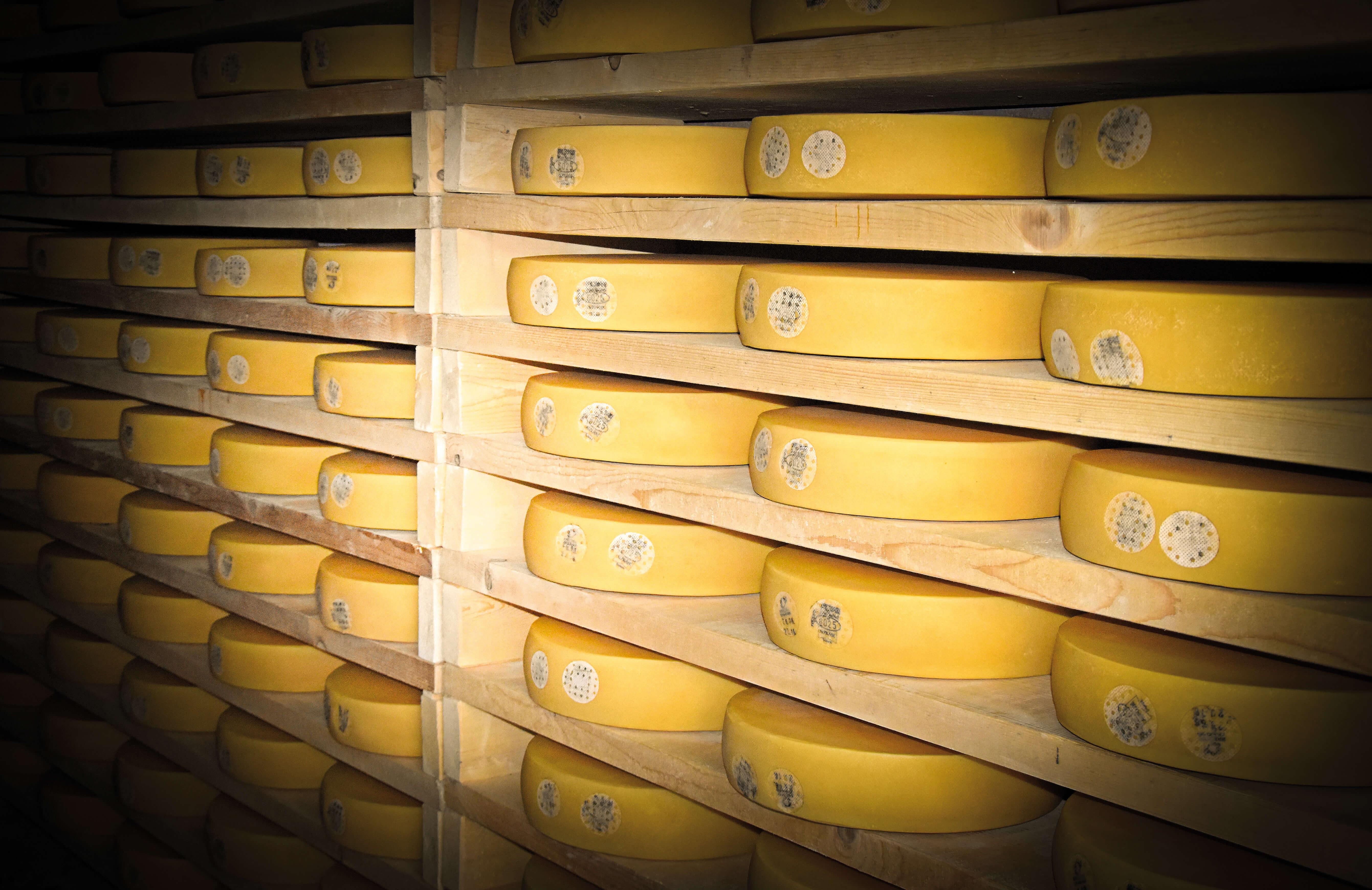 Glück im vollen Käse-Speicher